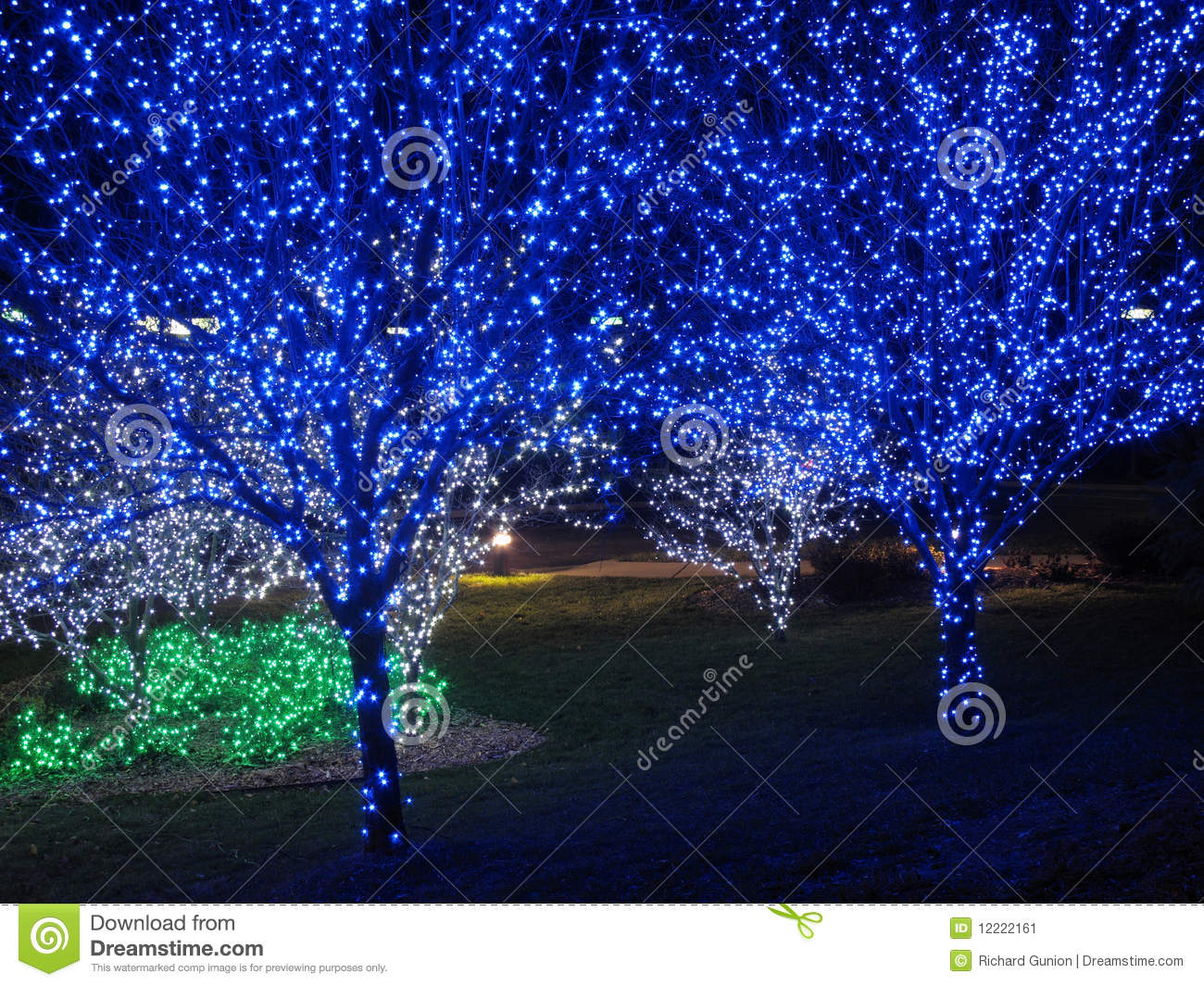 blue christmas tree pair - Christmas Tree With Blue Lights