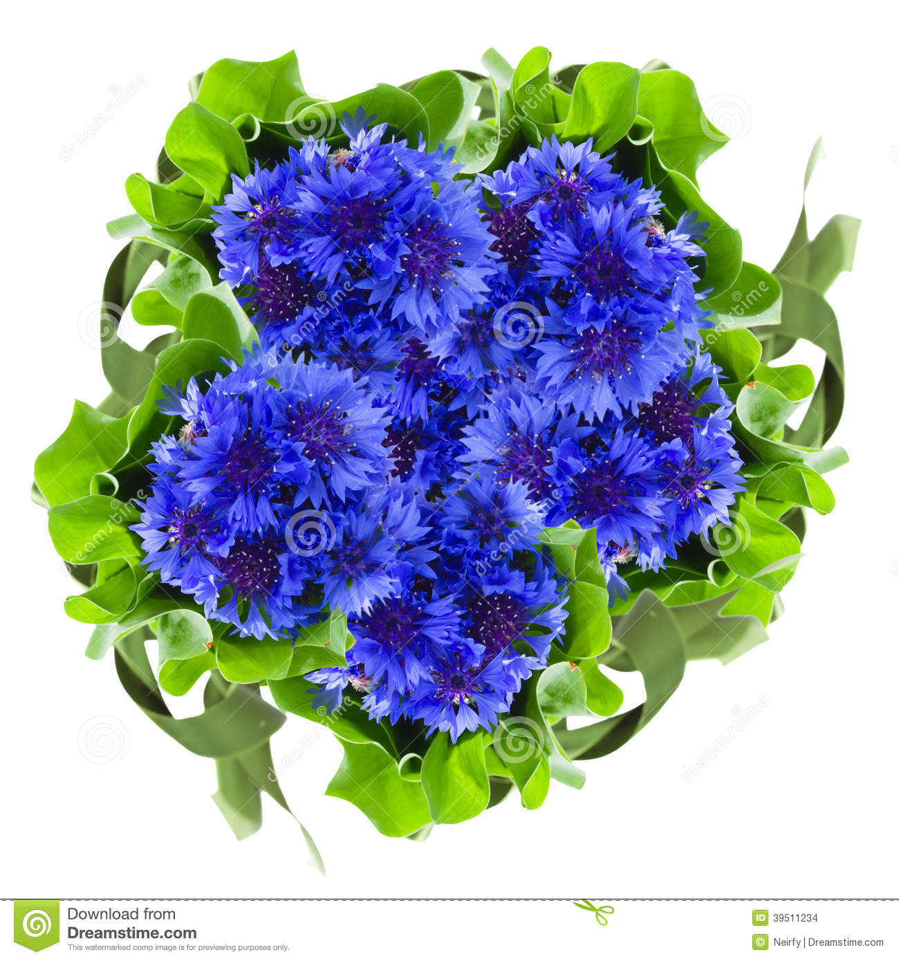 Blue cornflowers round bouquet