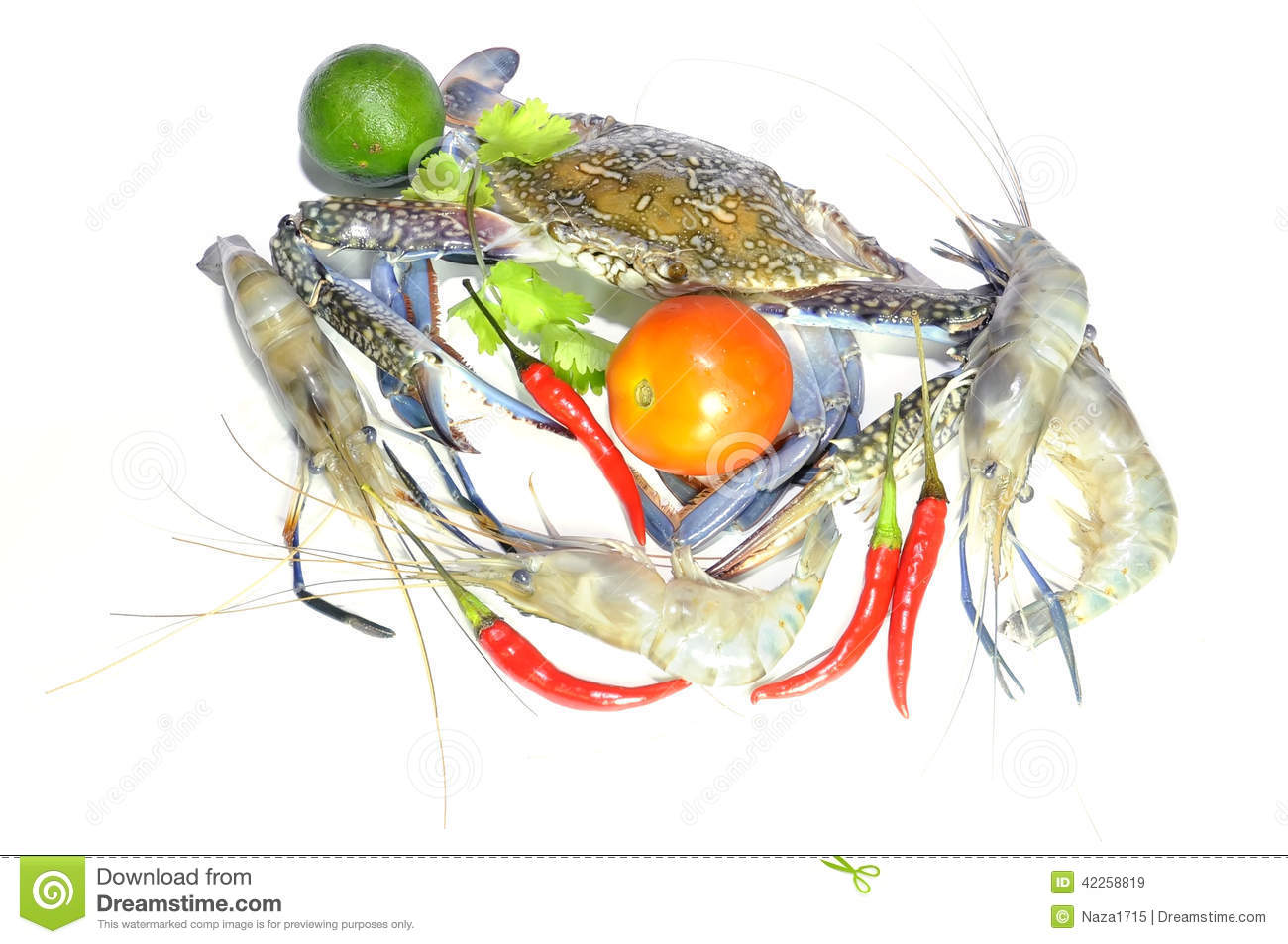 Giant Lobster Royalty-Free Stock Photo | CartoonDealer.com #39542589