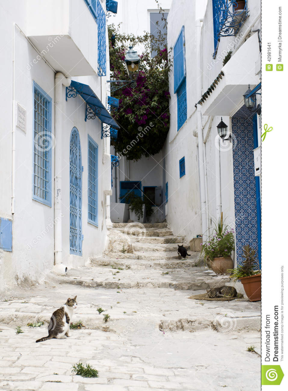 blue doors window and white wall of building in sidi bou said stock image image of city. Black Bedroom Furniture Sets. Home Design Ideas