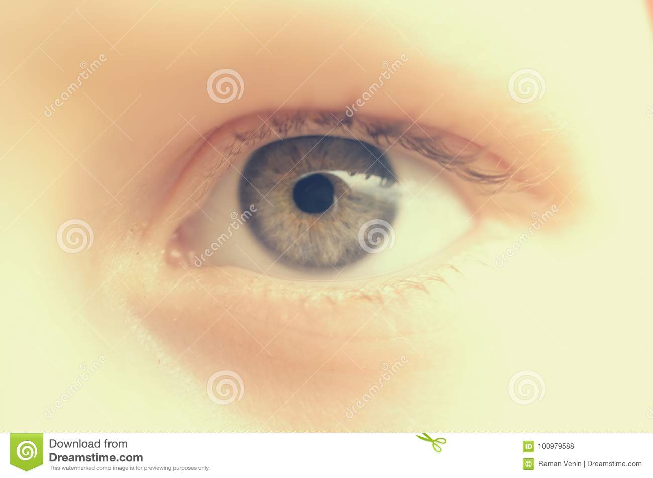 look straight in the eye