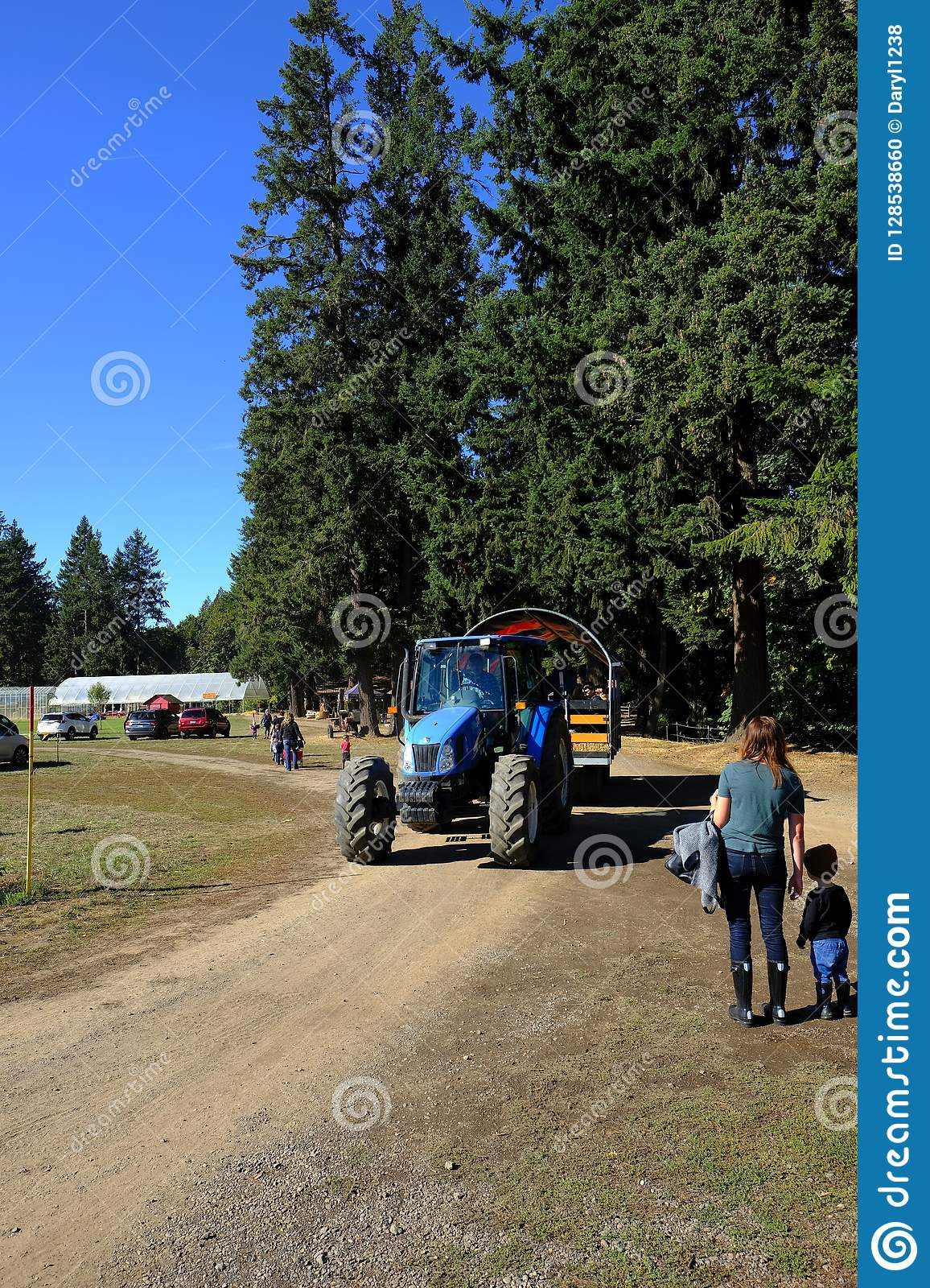 Blue farm tractor with big green trees on a dirt road with blue sky