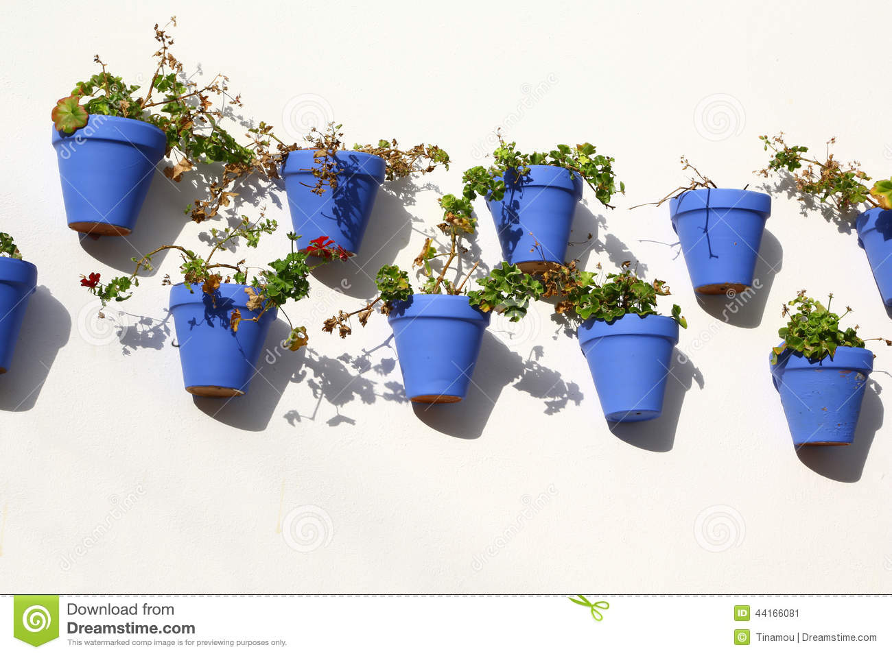 Blue Flower Pots Hanging From A Wall Cordoba Stock Image