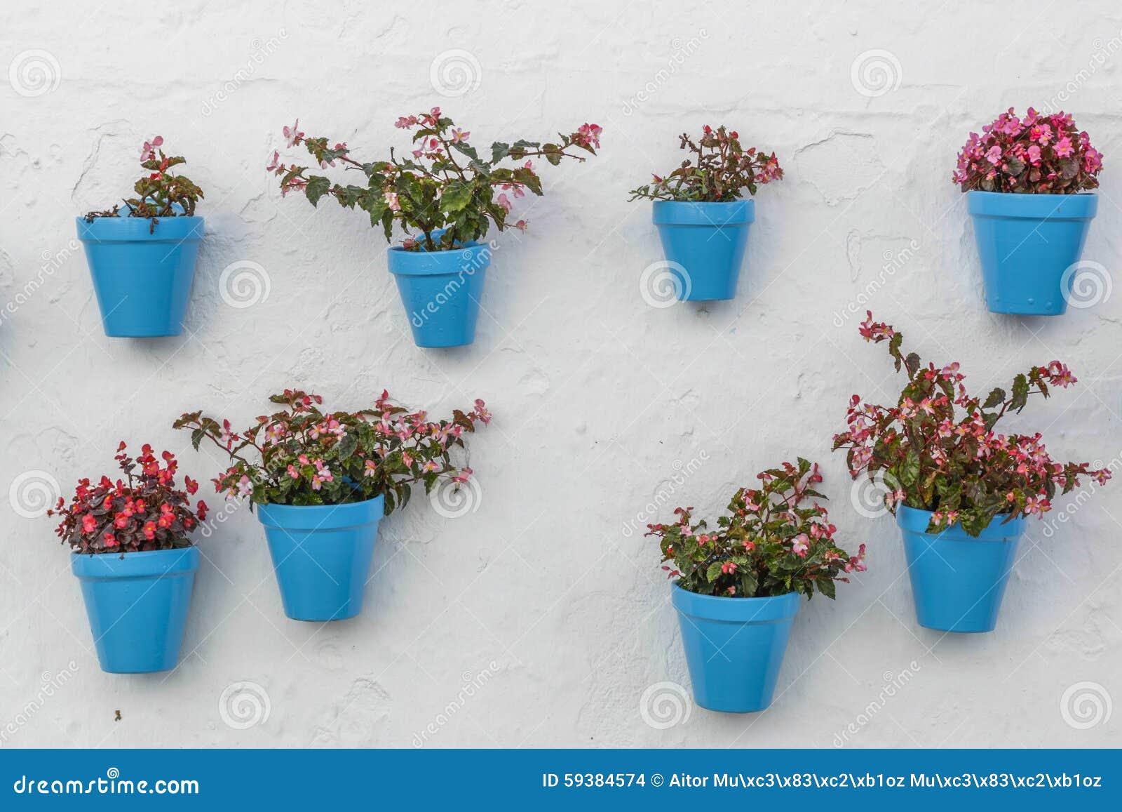 Blue flowerpot on a wall