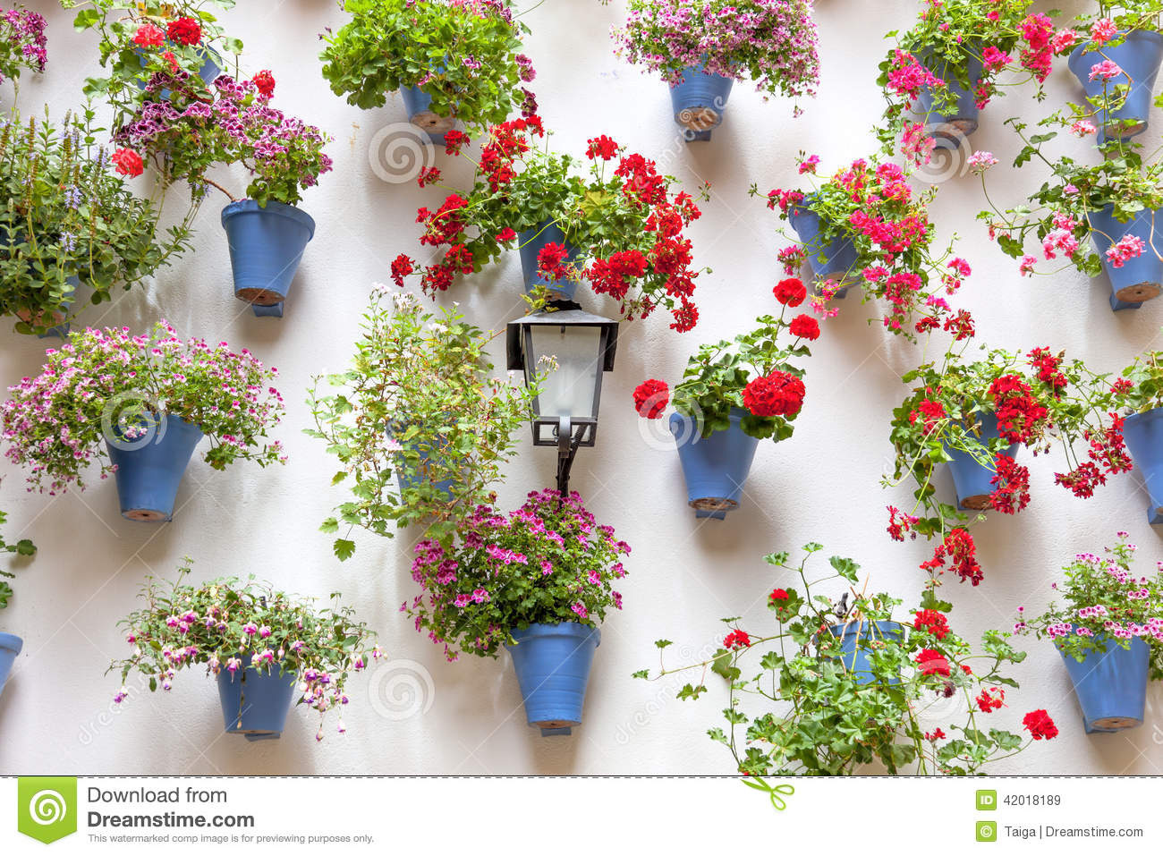 Blue Flowerpots And Red Flowers On A White Wall With