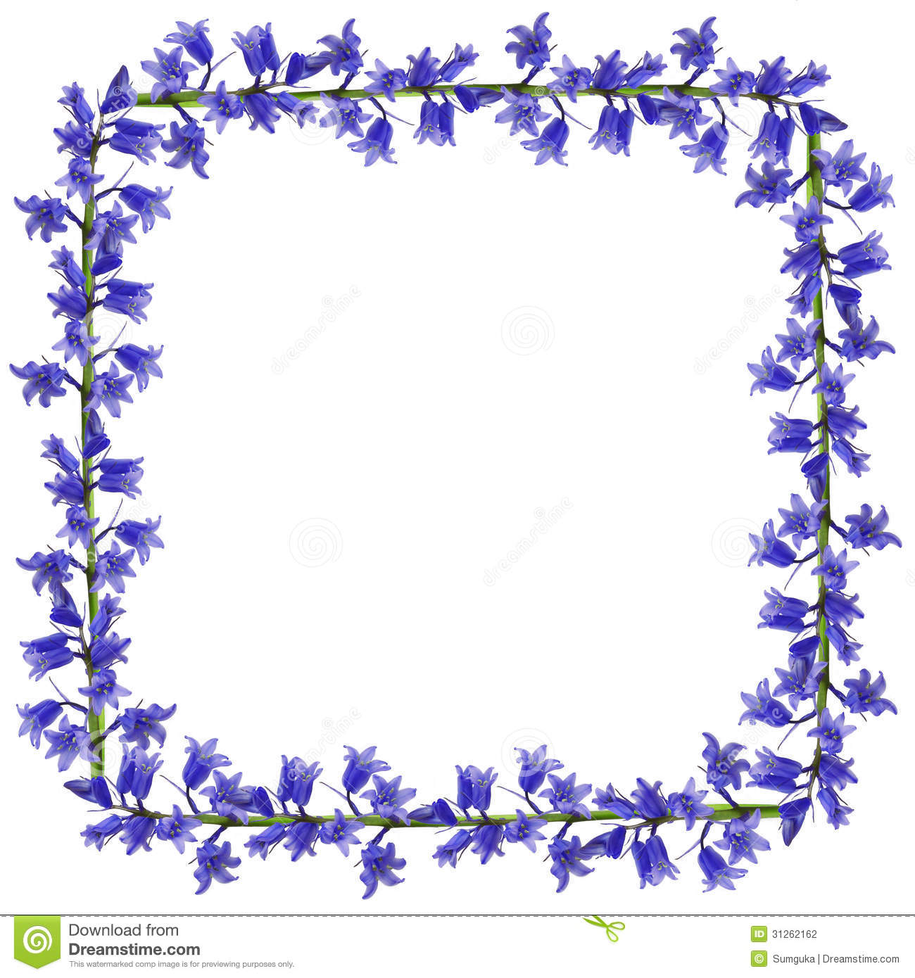 Blue Flowers Frame Stock Photography Image 31262162