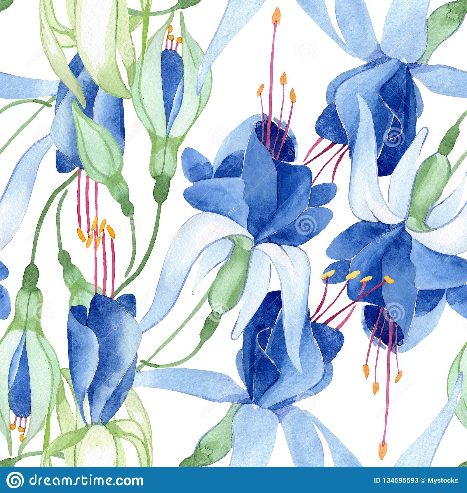 Blue fuchsia. Floral botanical flower. Watercolour drawing fashion aquarelle isolated. Seamless background pattern.