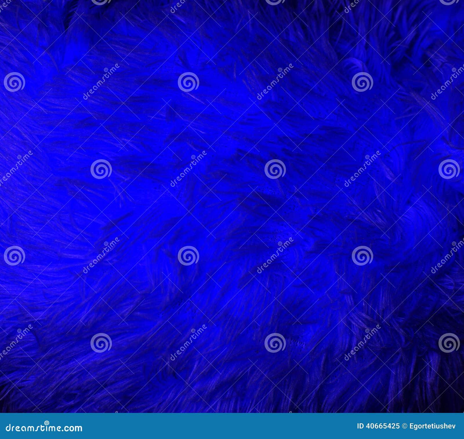 Blue fur macro