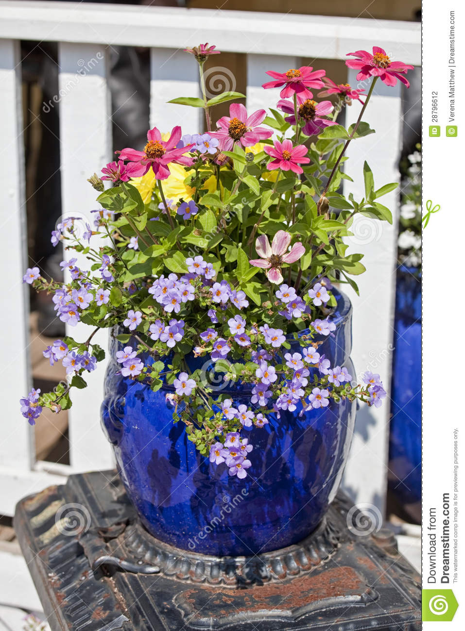 Blue Glazed Terracotta Planters Stock Photography Image