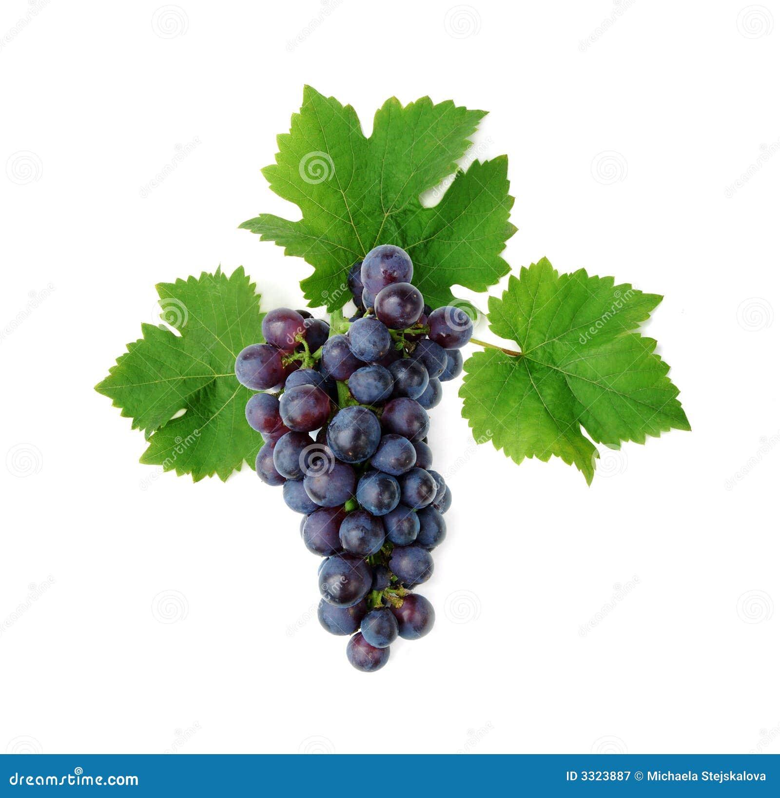 К чему сниться чёрный виноград