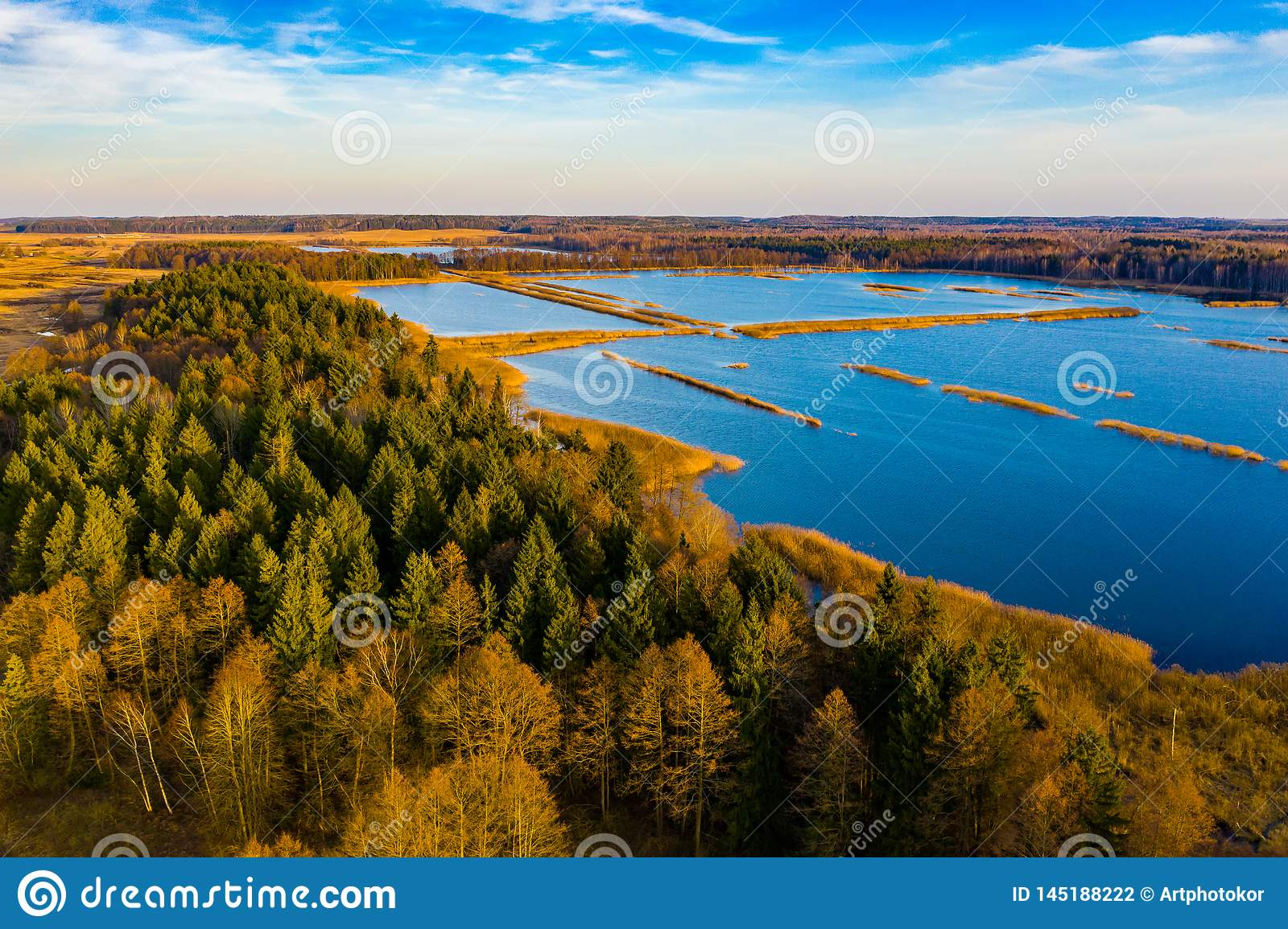 Blue lakes surrounding thick forest aerial view. Season concept. Beautiful landscape