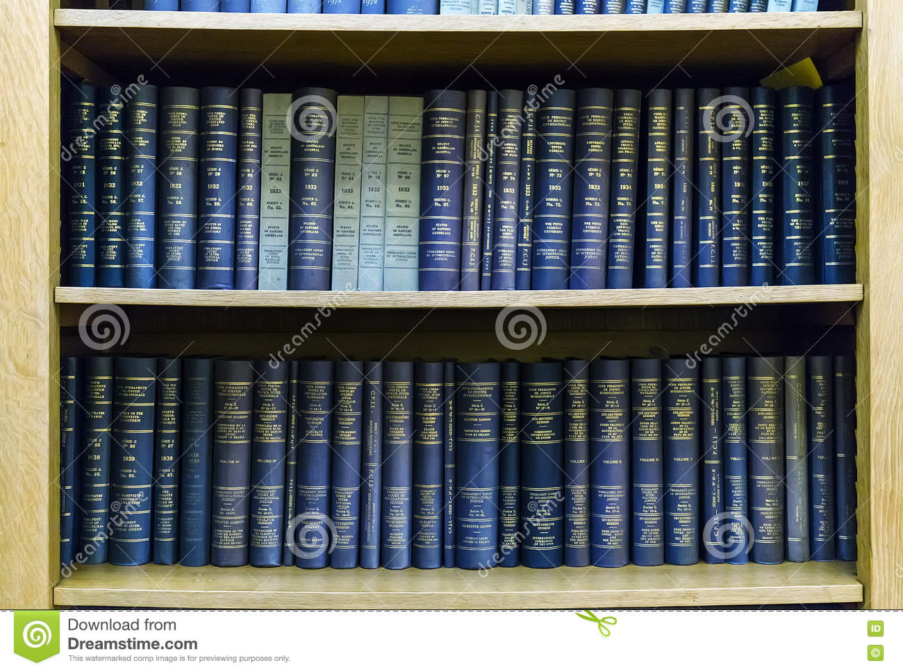 Blue Law Books In Bookshelf Download Preview