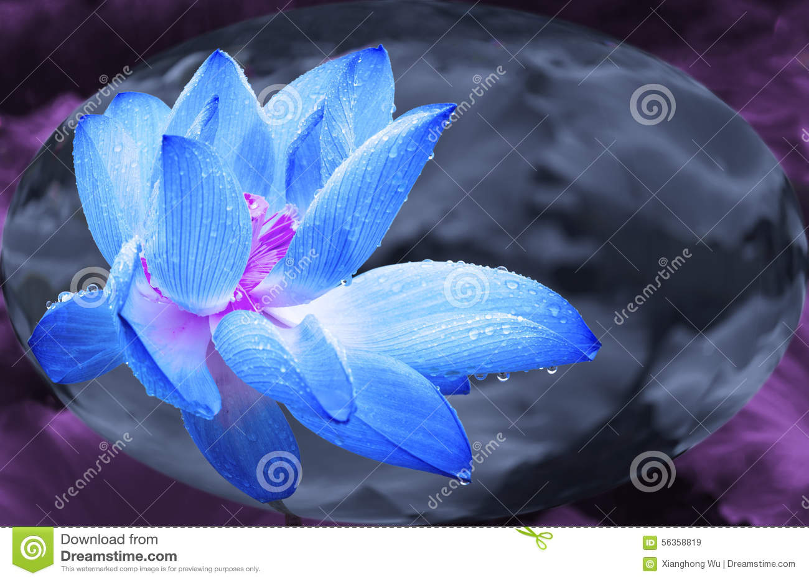 Blue Lotus In Crystal Ball Stock Illustration Illustration Of