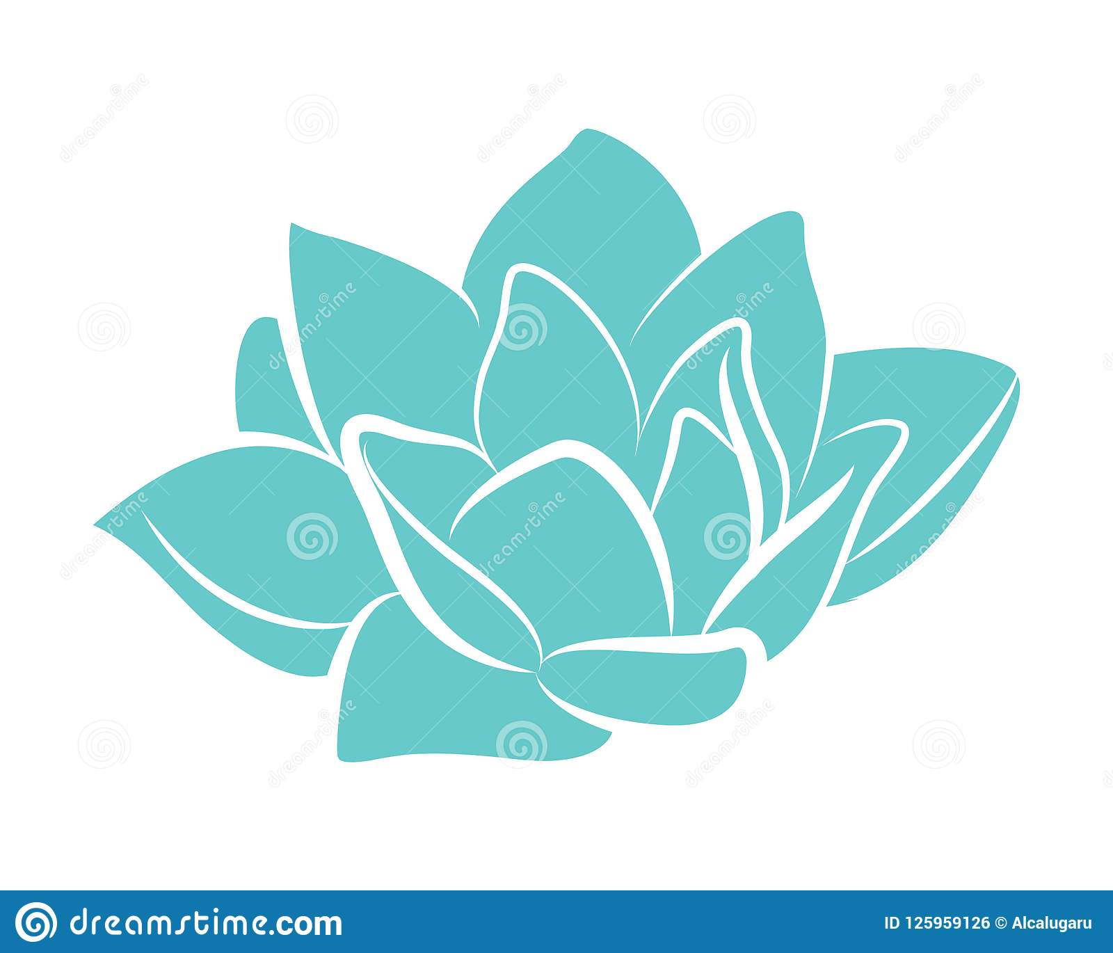 Blue Lotus Water Flower Lily Vector Stock Vector Illustration Of
