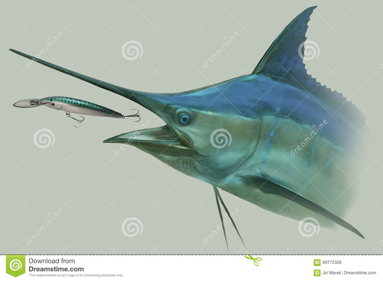 Blue marlin chasing lure fishing portrait stock for Large ocean fish