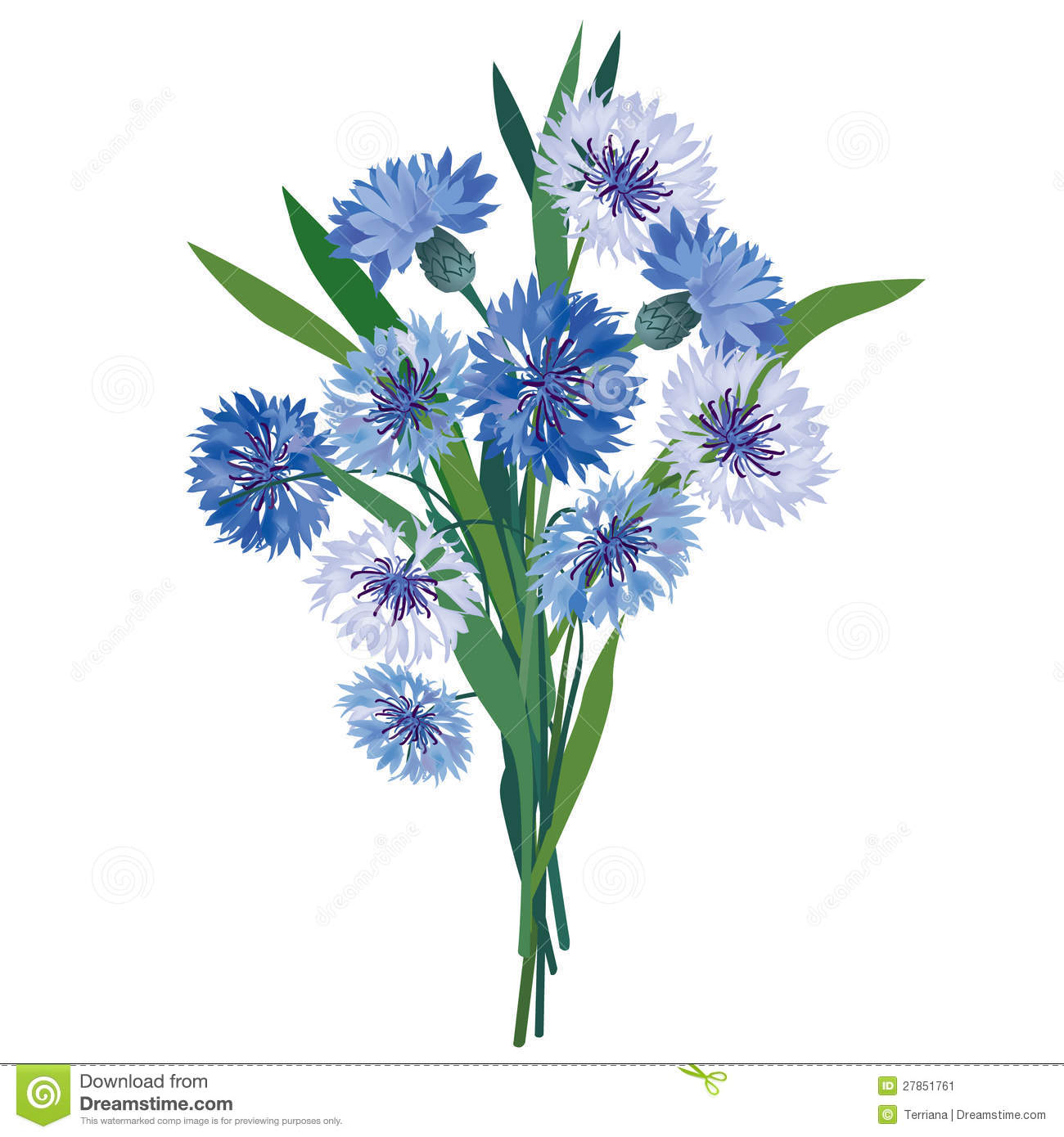 Blue Meadow Flower Bouquet. Stock Vector - Illustration of lilac ...