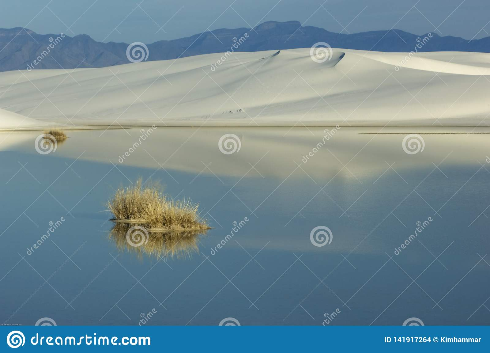 Rainwater reflects the blue sky in White Sands National Monument, New Mexico