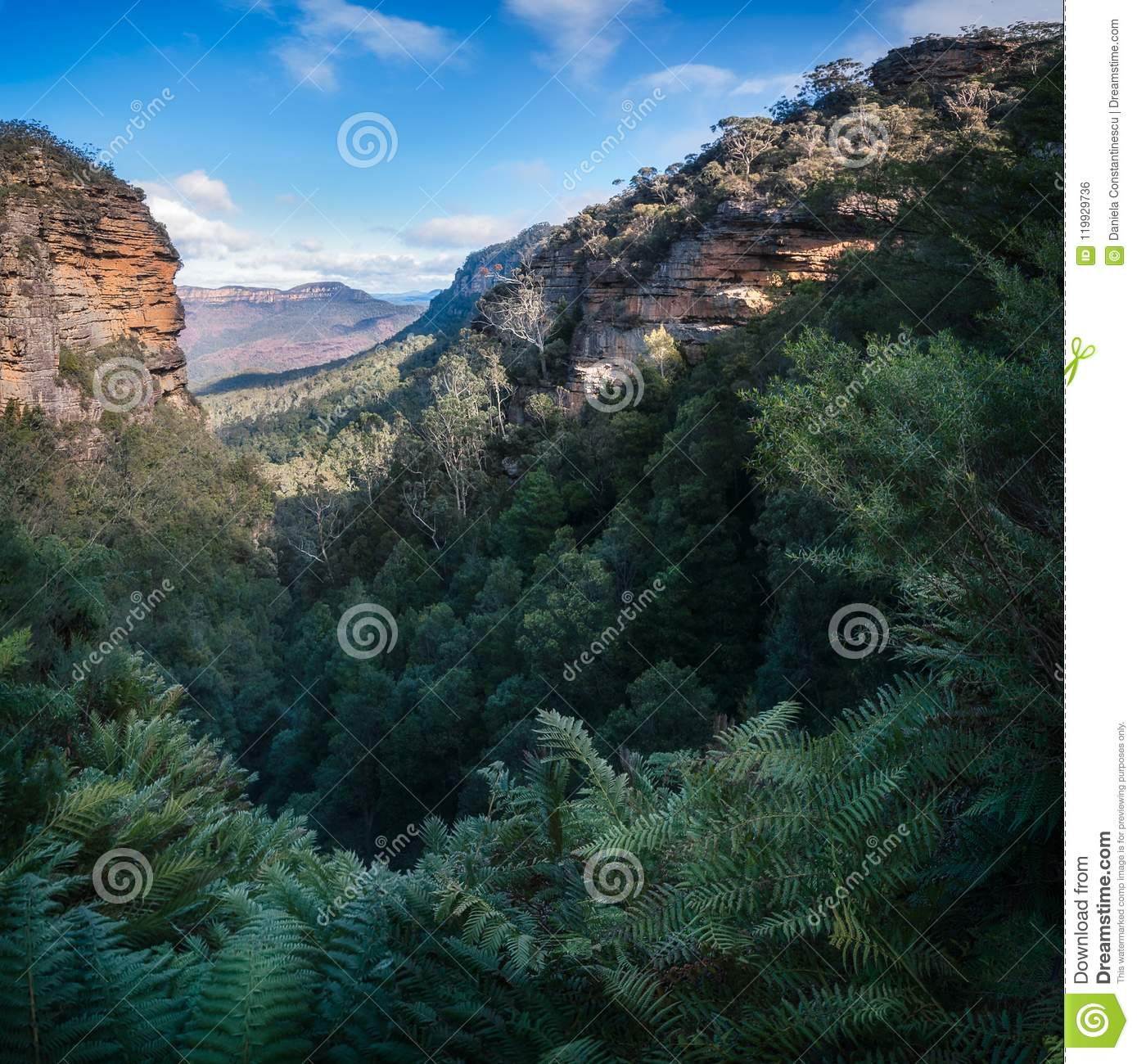 Download Blue Mountains Vista From Leura Cascades Walking Track Stock Photo - Image of bush, country: 119929736