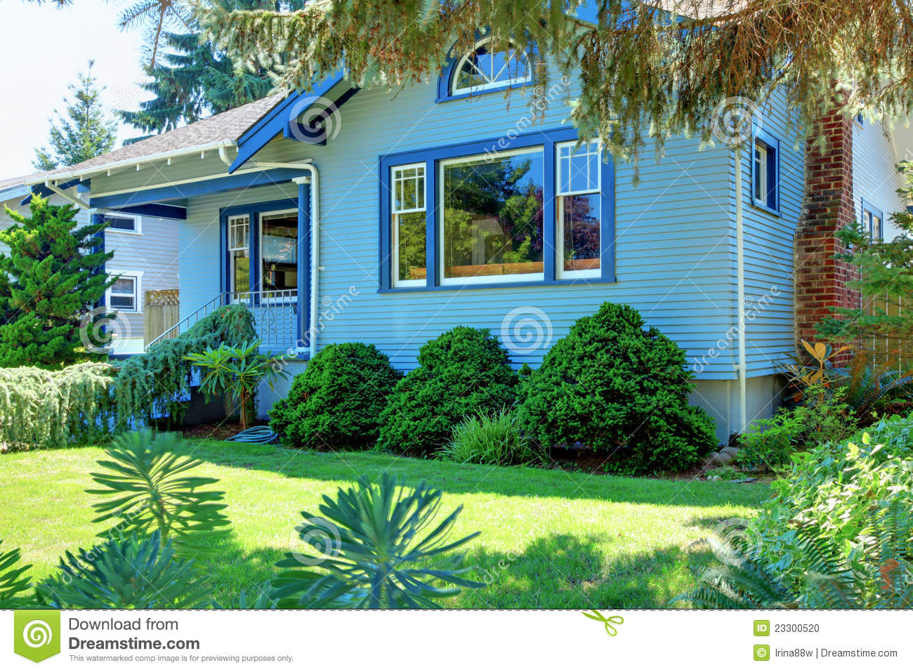 Blue Old Craftsman Style House Behind The Tree Stock Photo