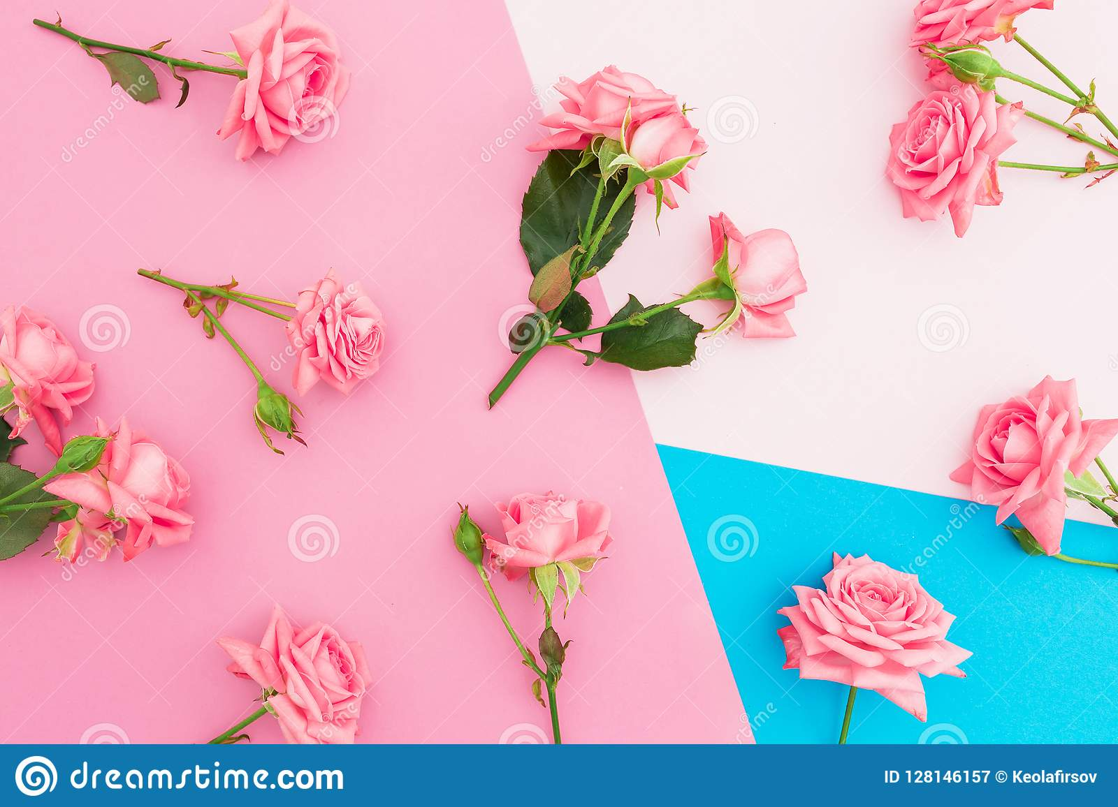 Blue And Pink Pastel Background With Pink Roses Flowers Flat Lay