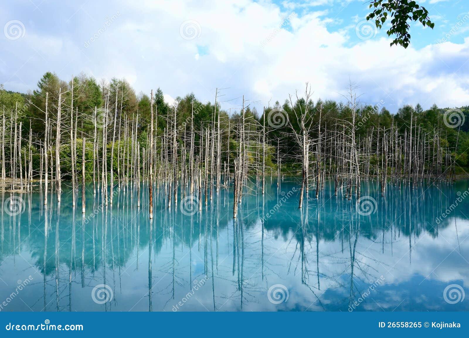Biei blue pond stock photo 79660398 for Pond dealers