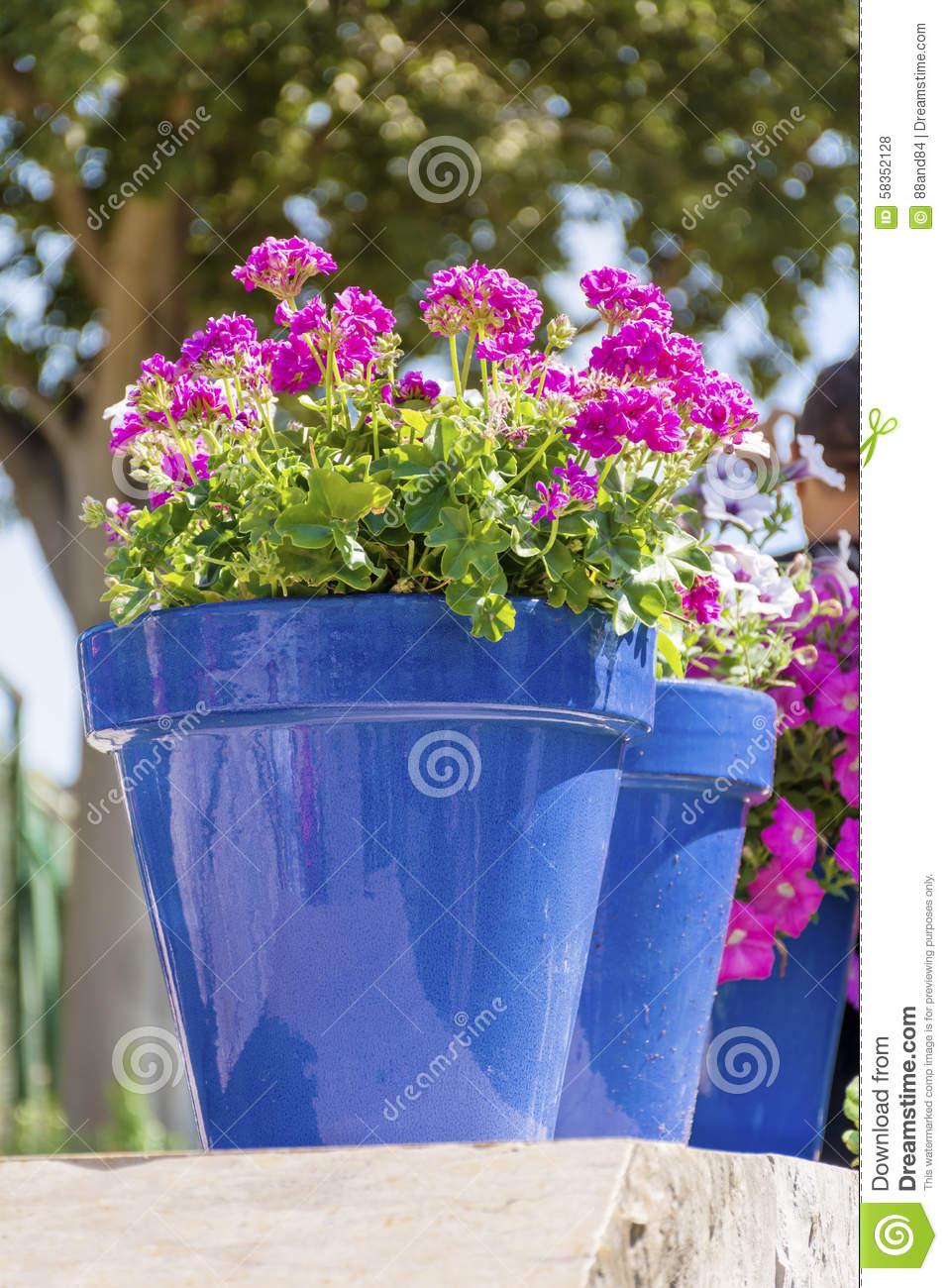 Blue pots with pink geranium flowers for street decoration in spain royalty free stock photo mightylinksfo