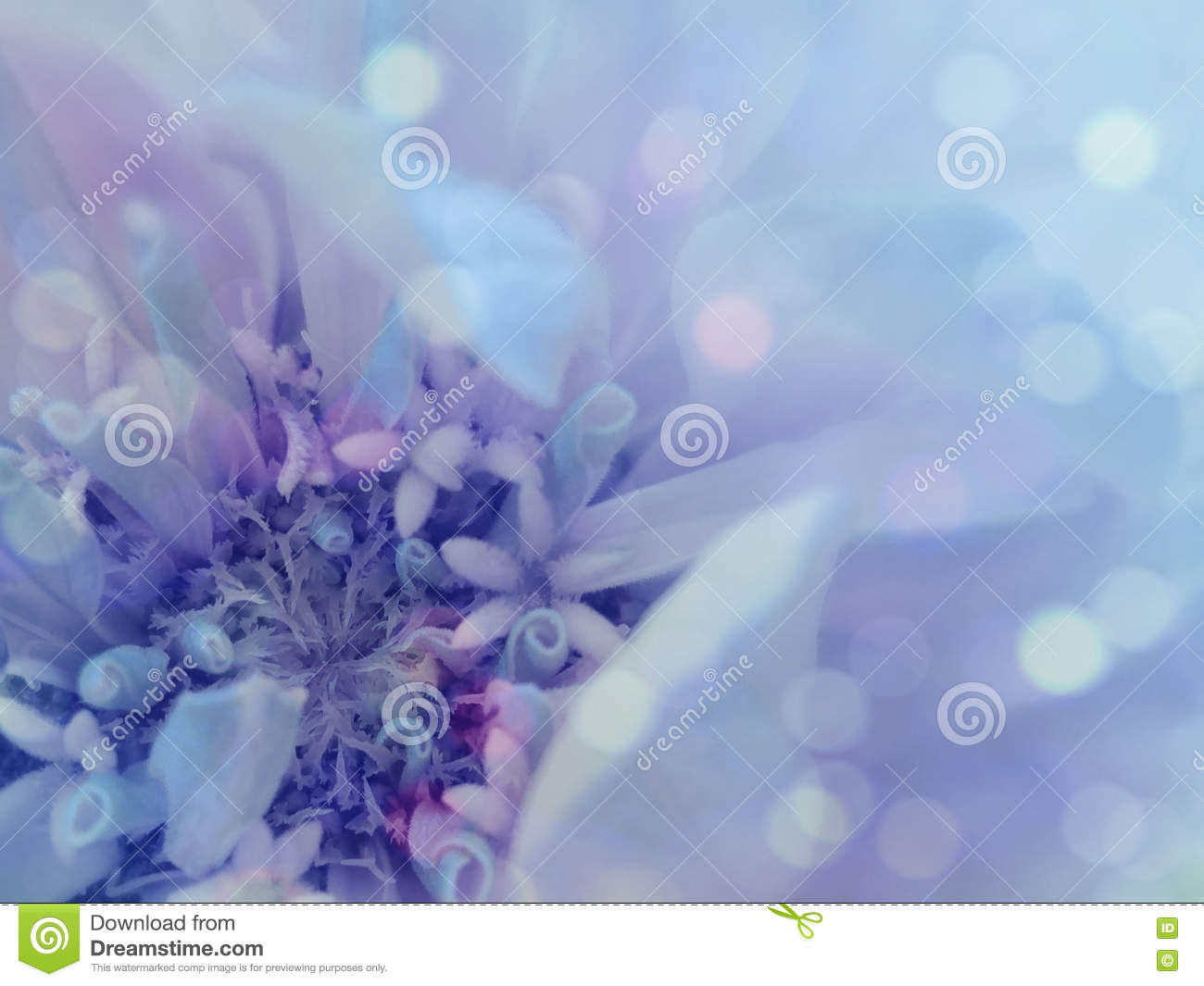 Blue Purple Flower On The Transparent Blue Blurred Background