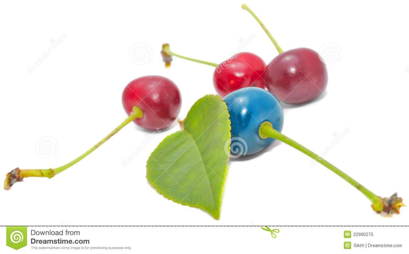 Blue and red cherries with green leaf royalty free stock for Miroir au dessus du lit