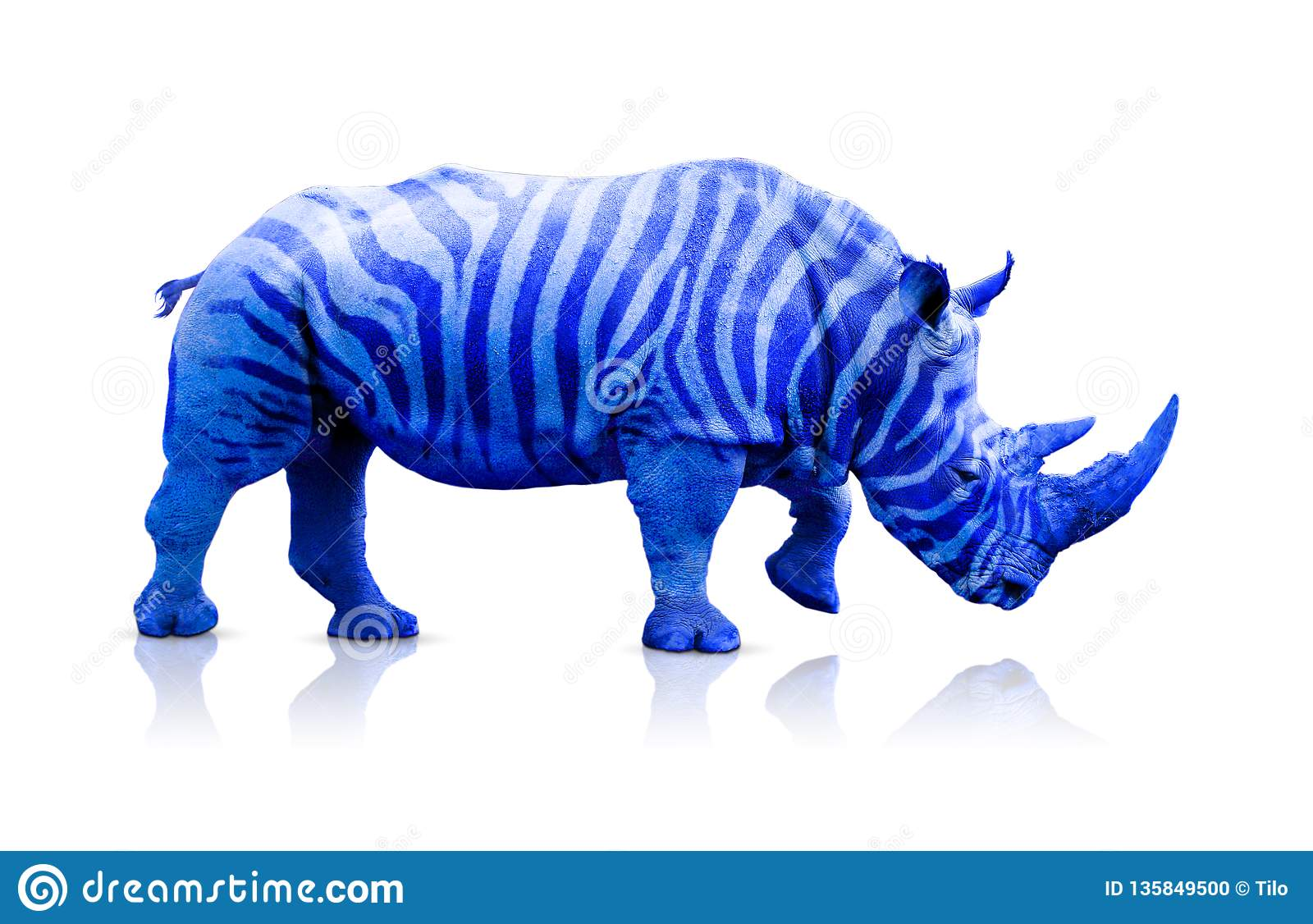 Blue rhino with zebra lines