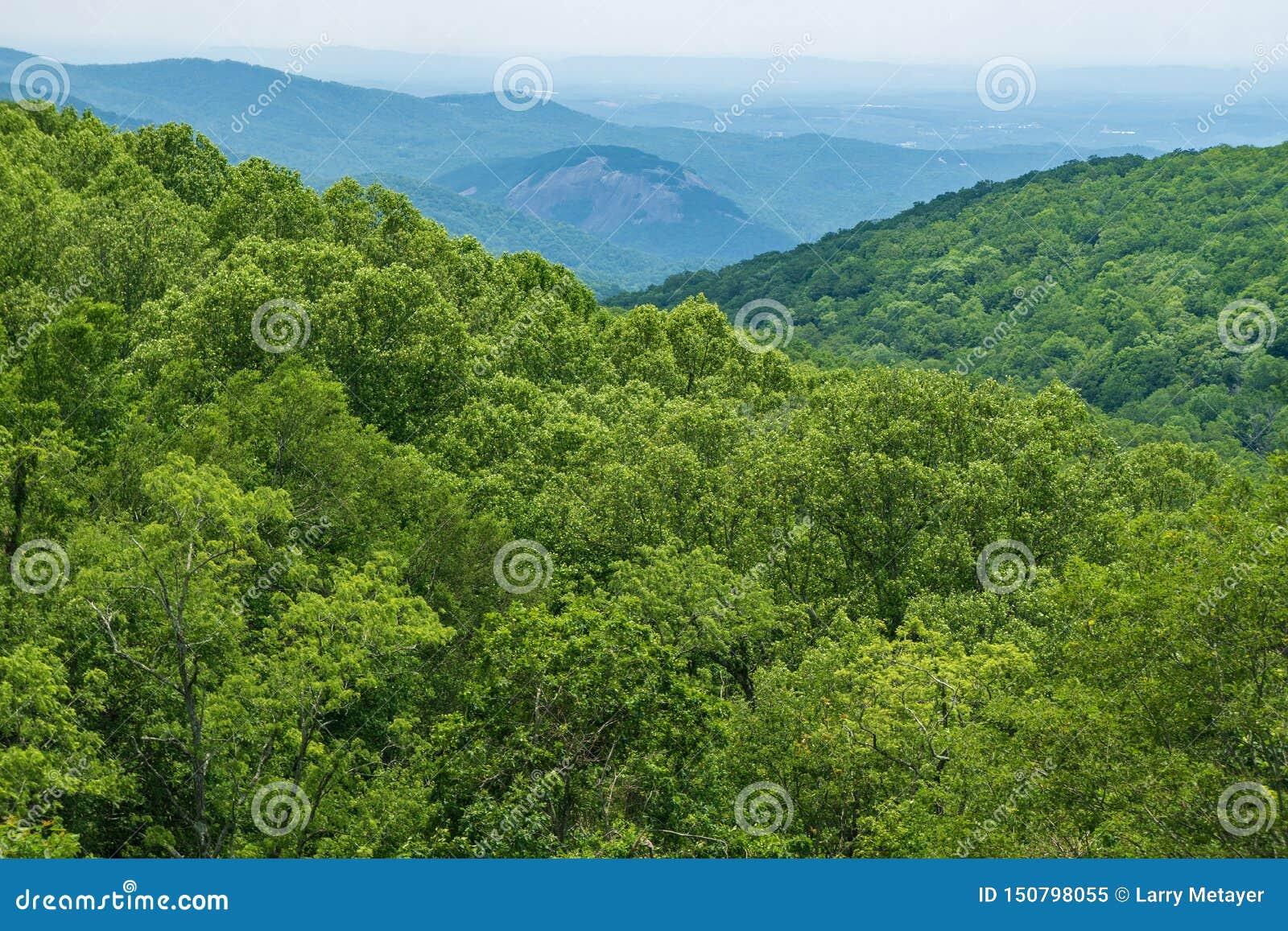 Blue Ridge Mountain In North Carolina Usa Stock Image