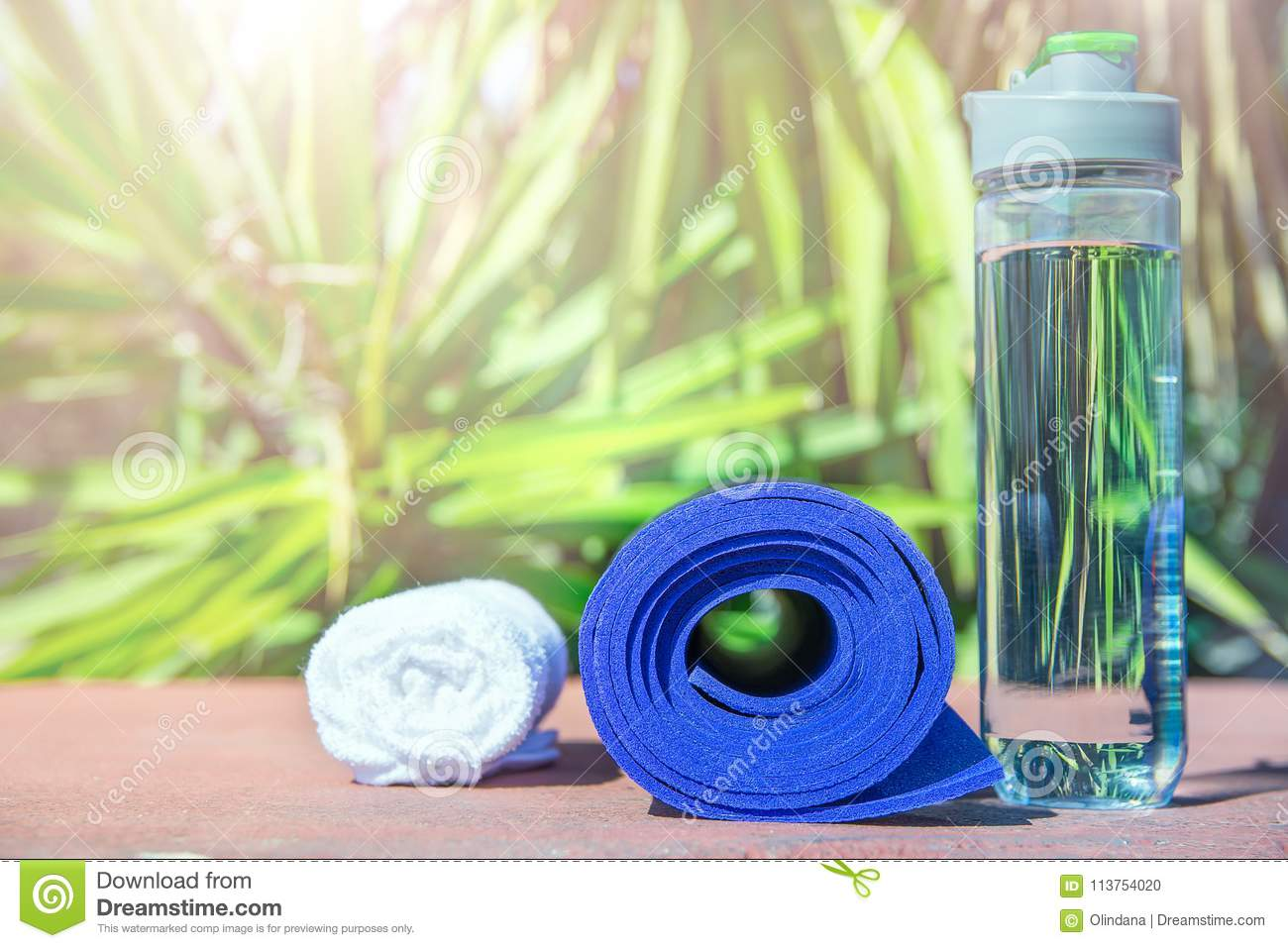 c45a73e5c30 Blue Rolled Yoga Mat Bottle With Water White Towel On Greenery Palm ...