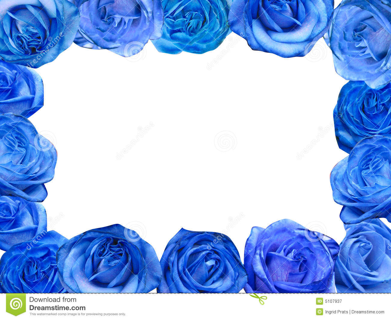 Blue Roses Frame Royalty Free Stock Photography - Image ...