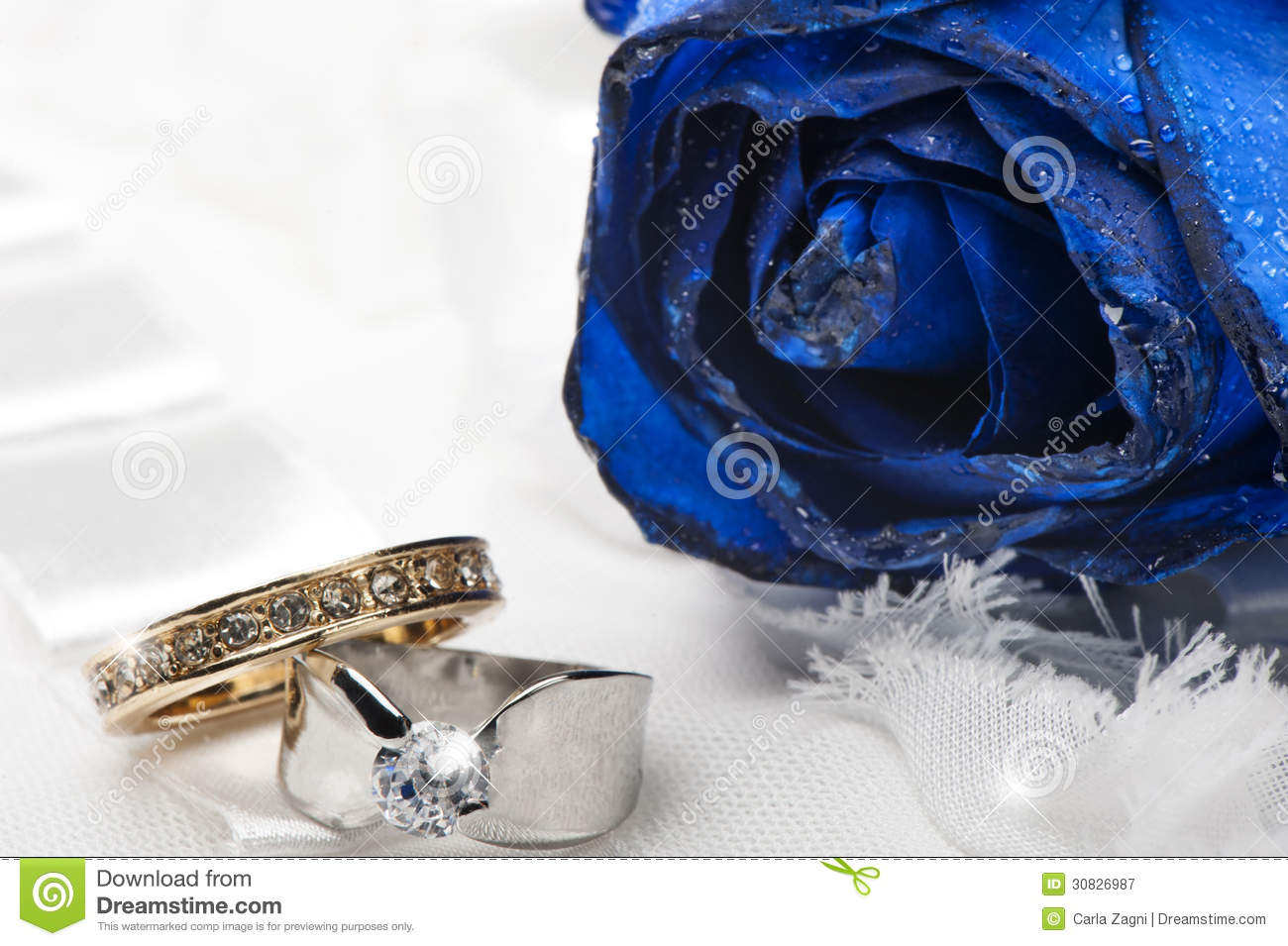 A Blue Roses And Wedding Rings Stock Image Image 30826987