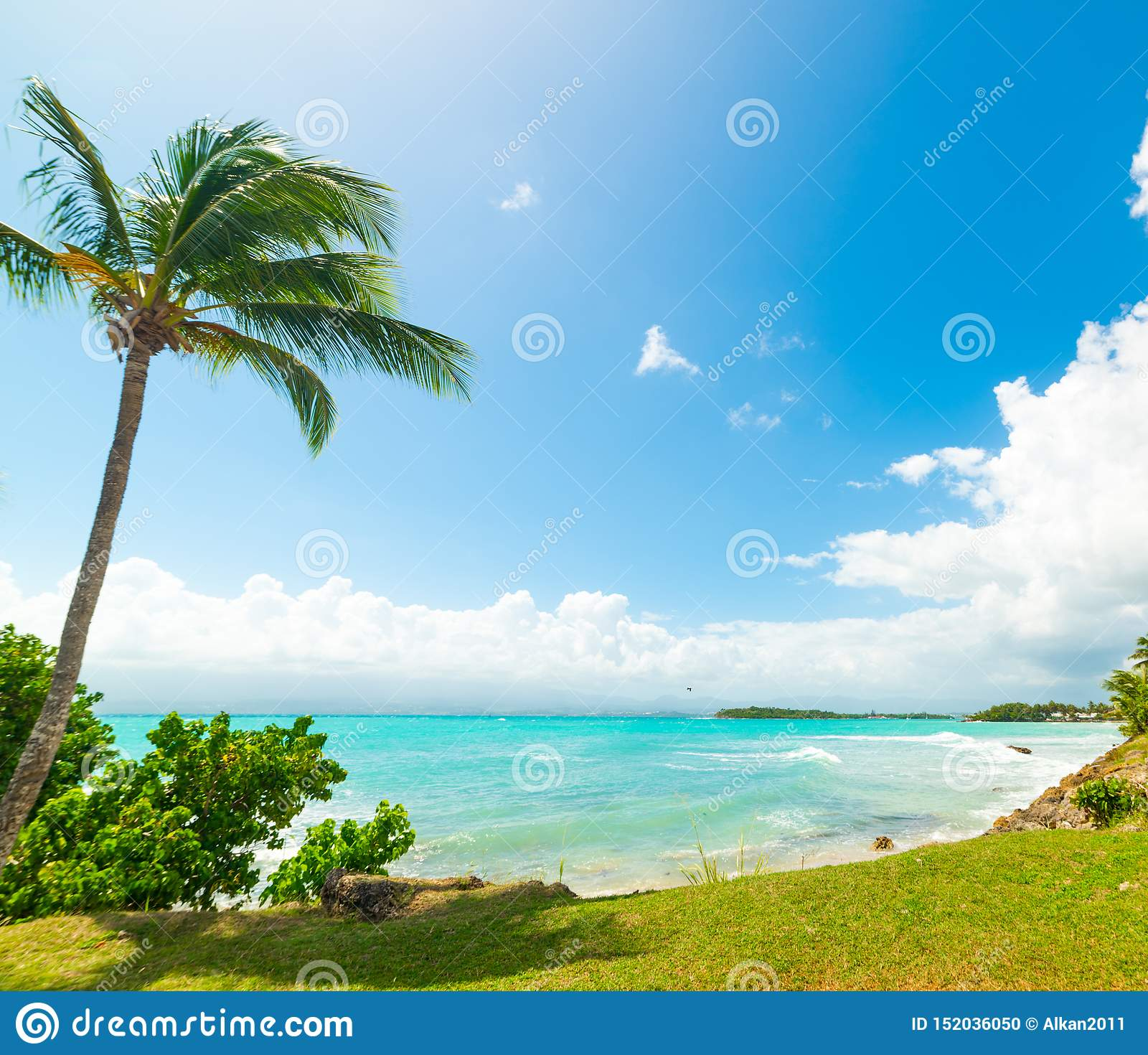 Guadeloupe Beach: Blue Sea In Bas Du Fort Beach In Guadeloupe Stock Photo