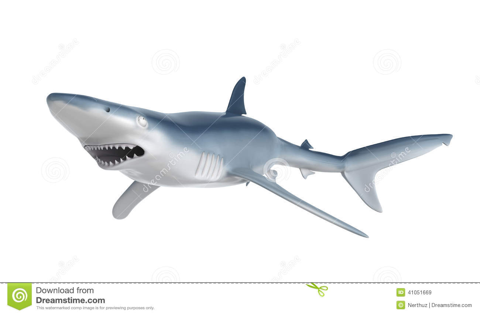 shark fin white background - photo #25