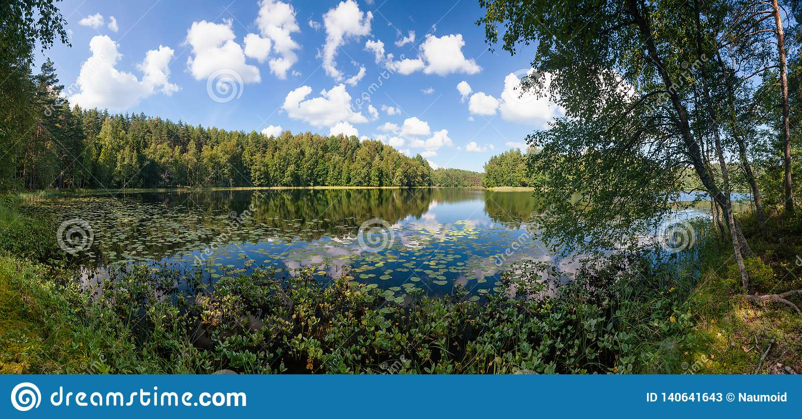 Summer day on remote calm lake in a boreal forest panorama