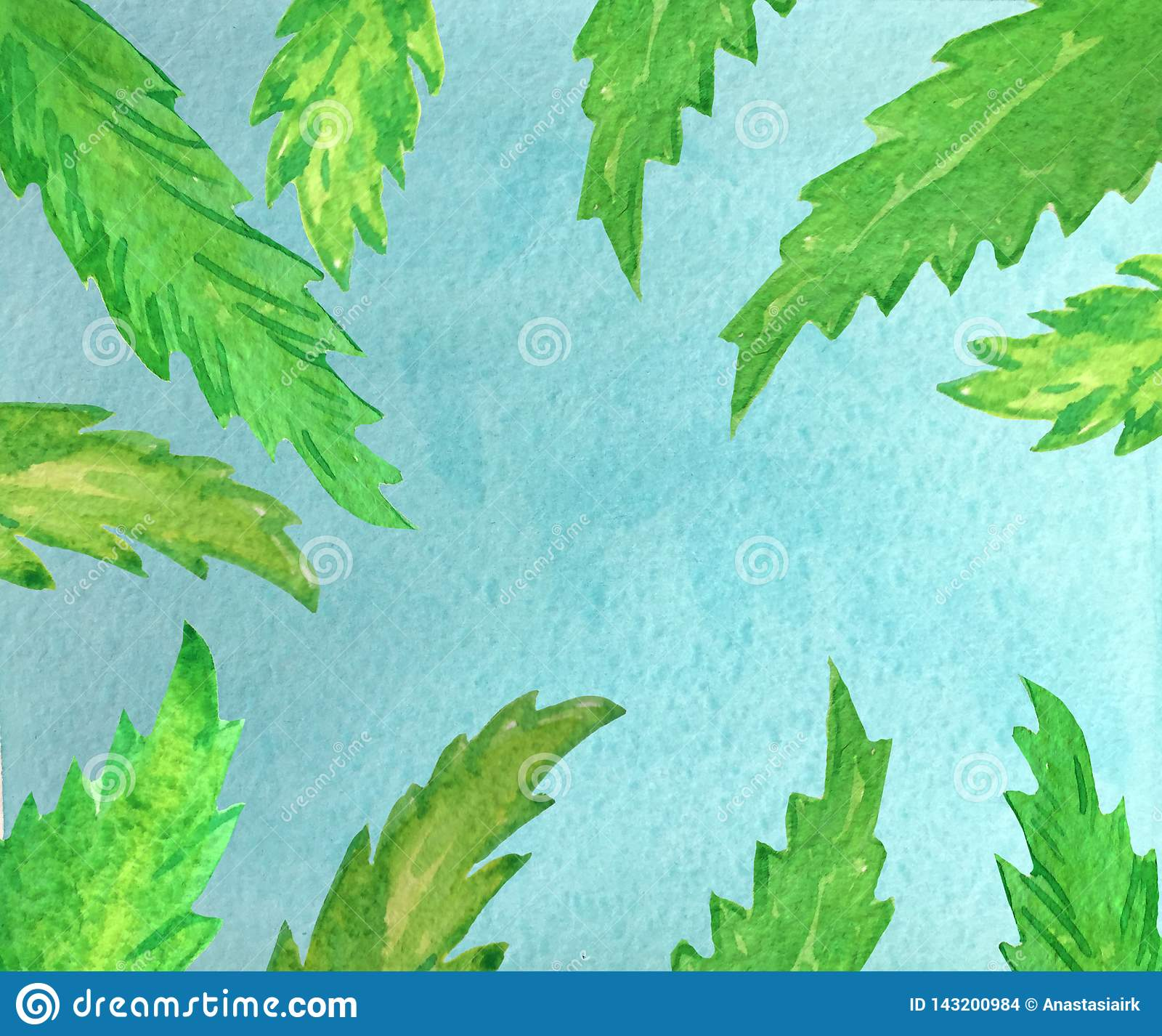 Blue sky and green palm leaves