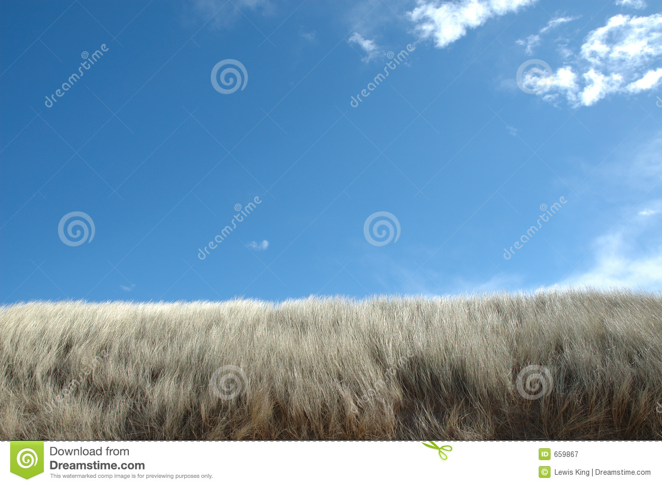 Blue Sky over Beach Dunes