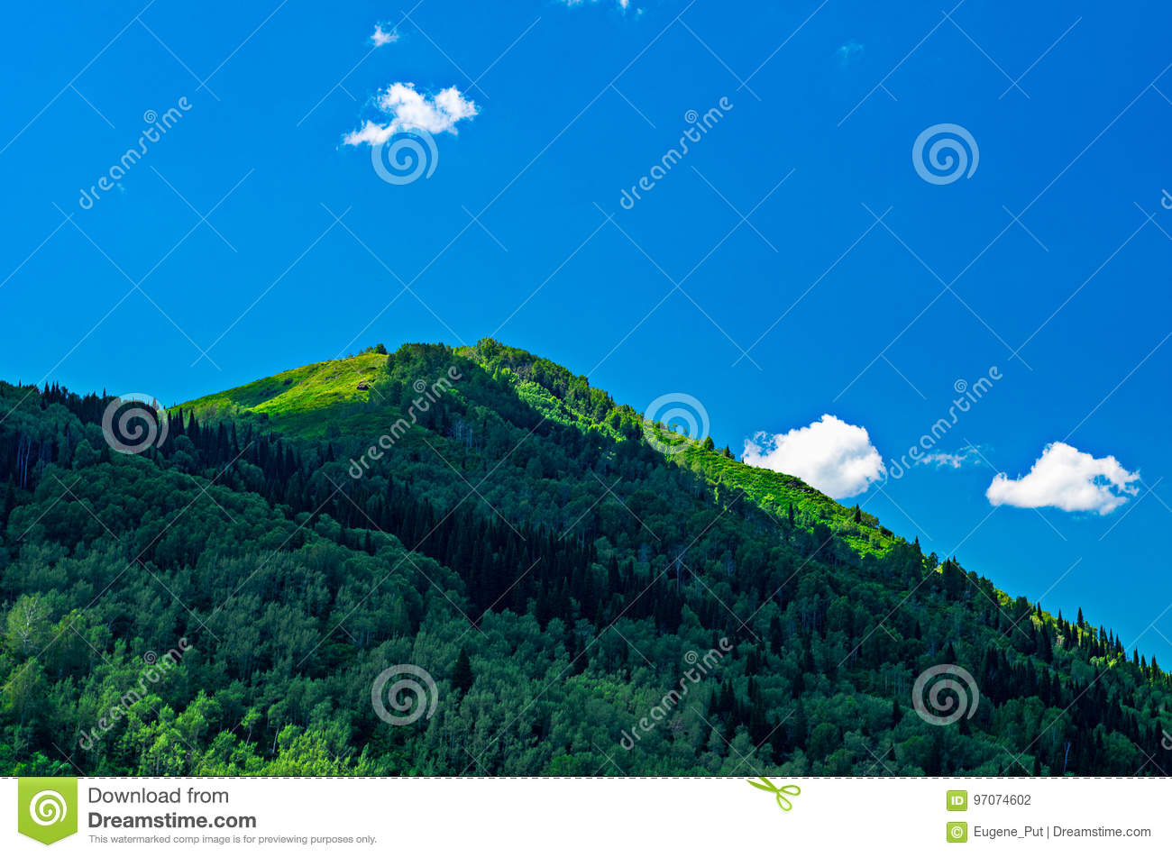Blue sky, white clouds, green Altai Mountains at noon