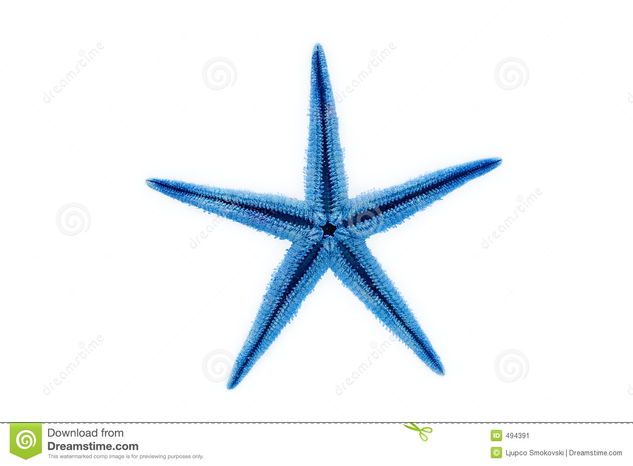 Blue Starfish Stock Image - Image: 494391