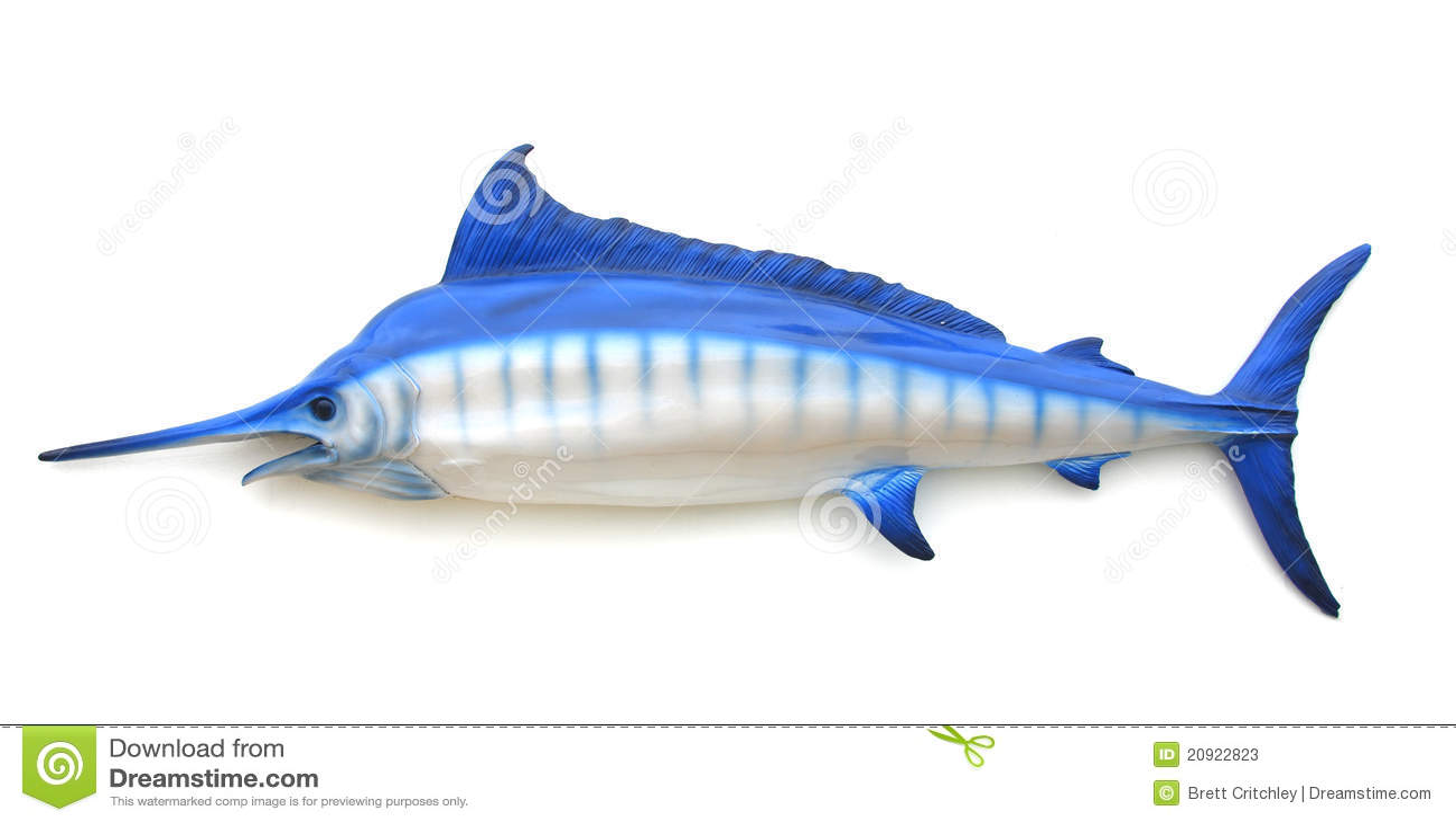 Blue Swordfish Stock Photos - Image: 20922823