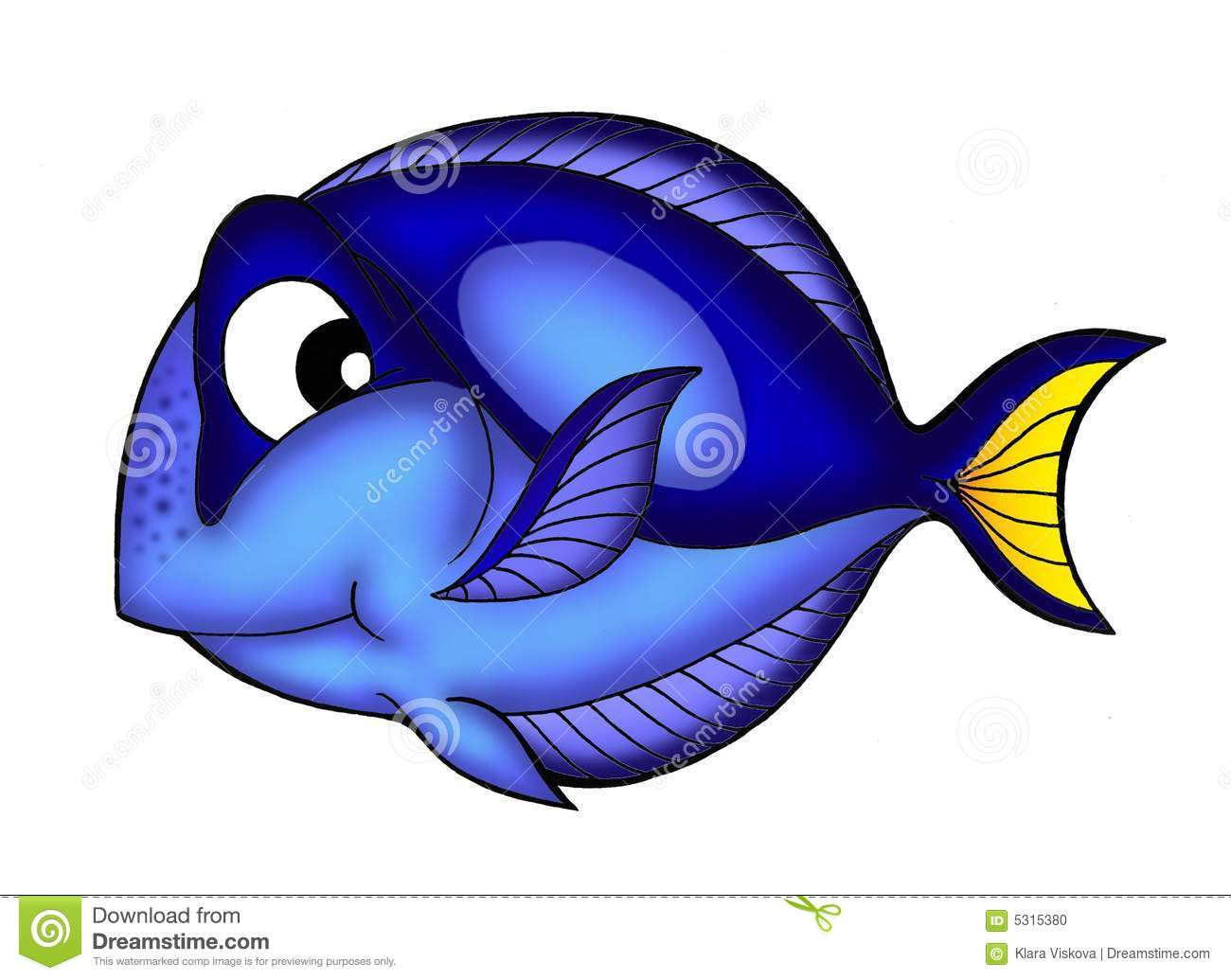 Blue tang fish stock photo image 5315380 for Blue tang fish price