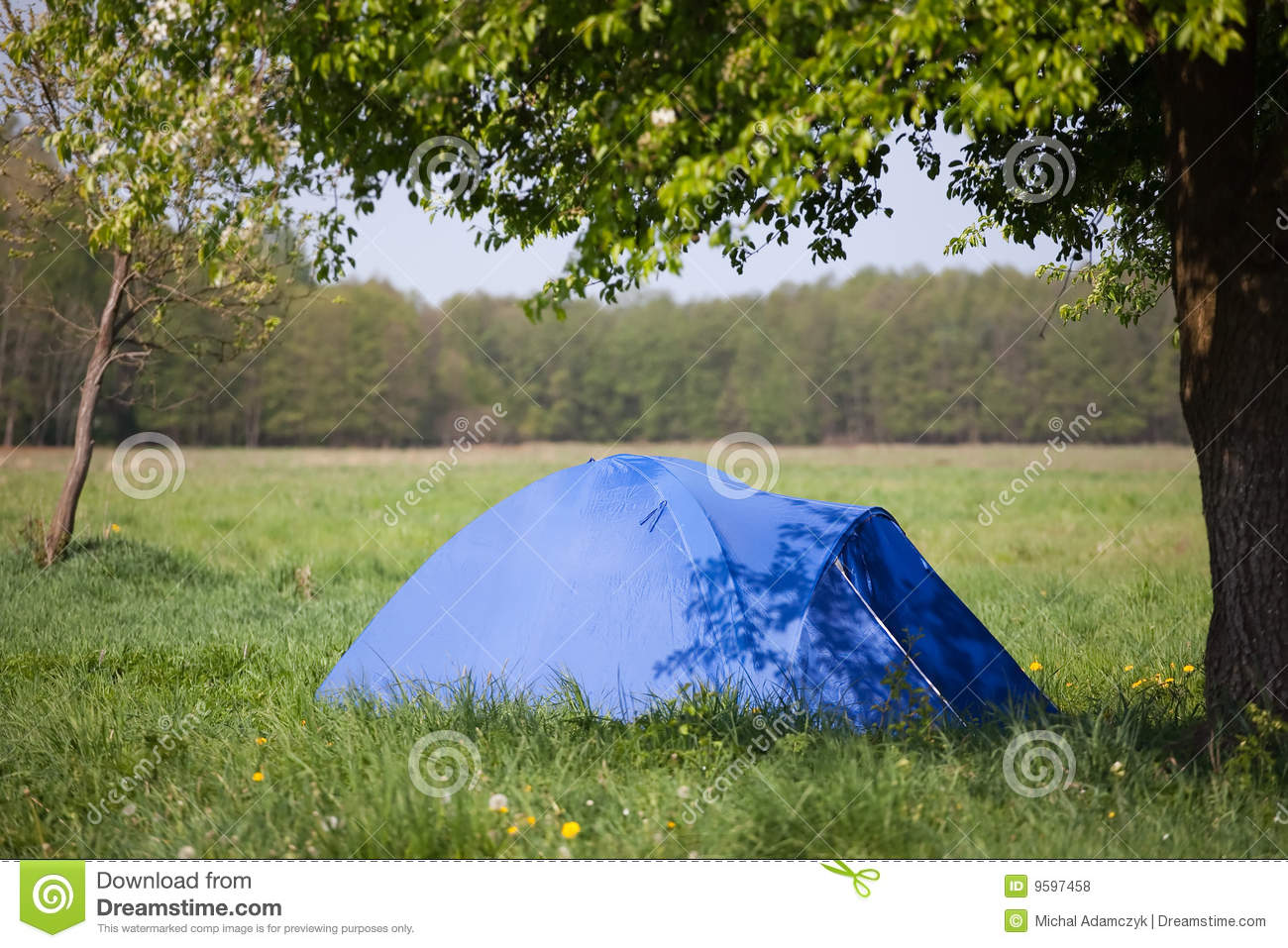 Blue tent under the tree & Blue tent under the tree stock photo. Image of summer - 9597458