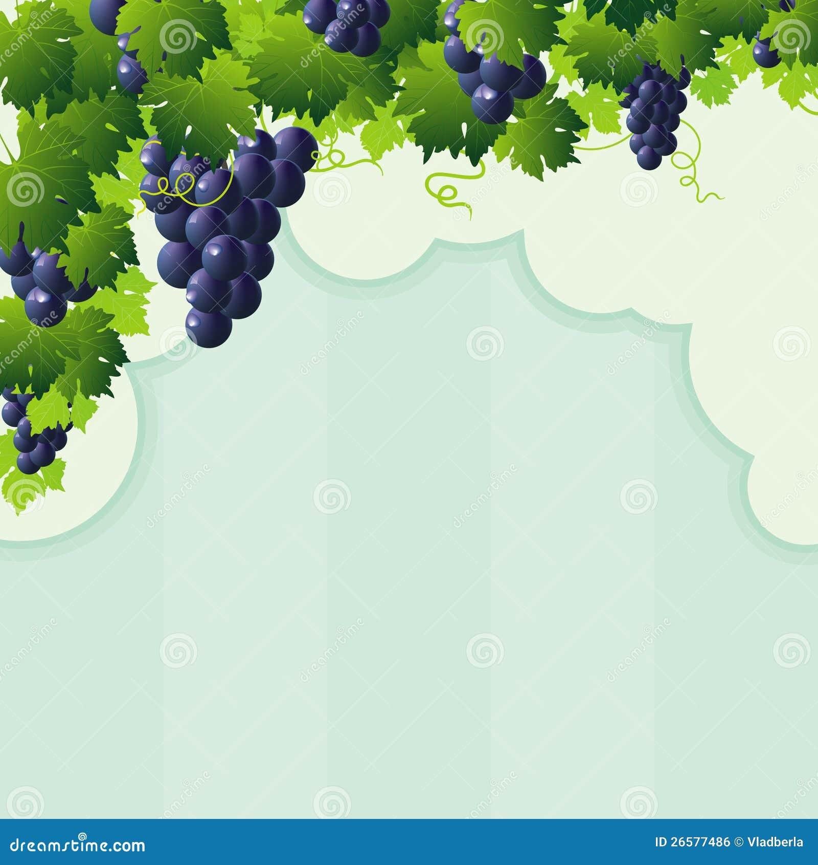 Blue Vine Grape Cutout Frame Royalty Free Stock Image - Image ... Flower Vine Clipart