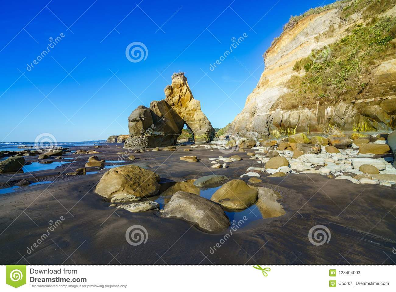 On the beach, 3 sisters and elephant rock, new zealand 46