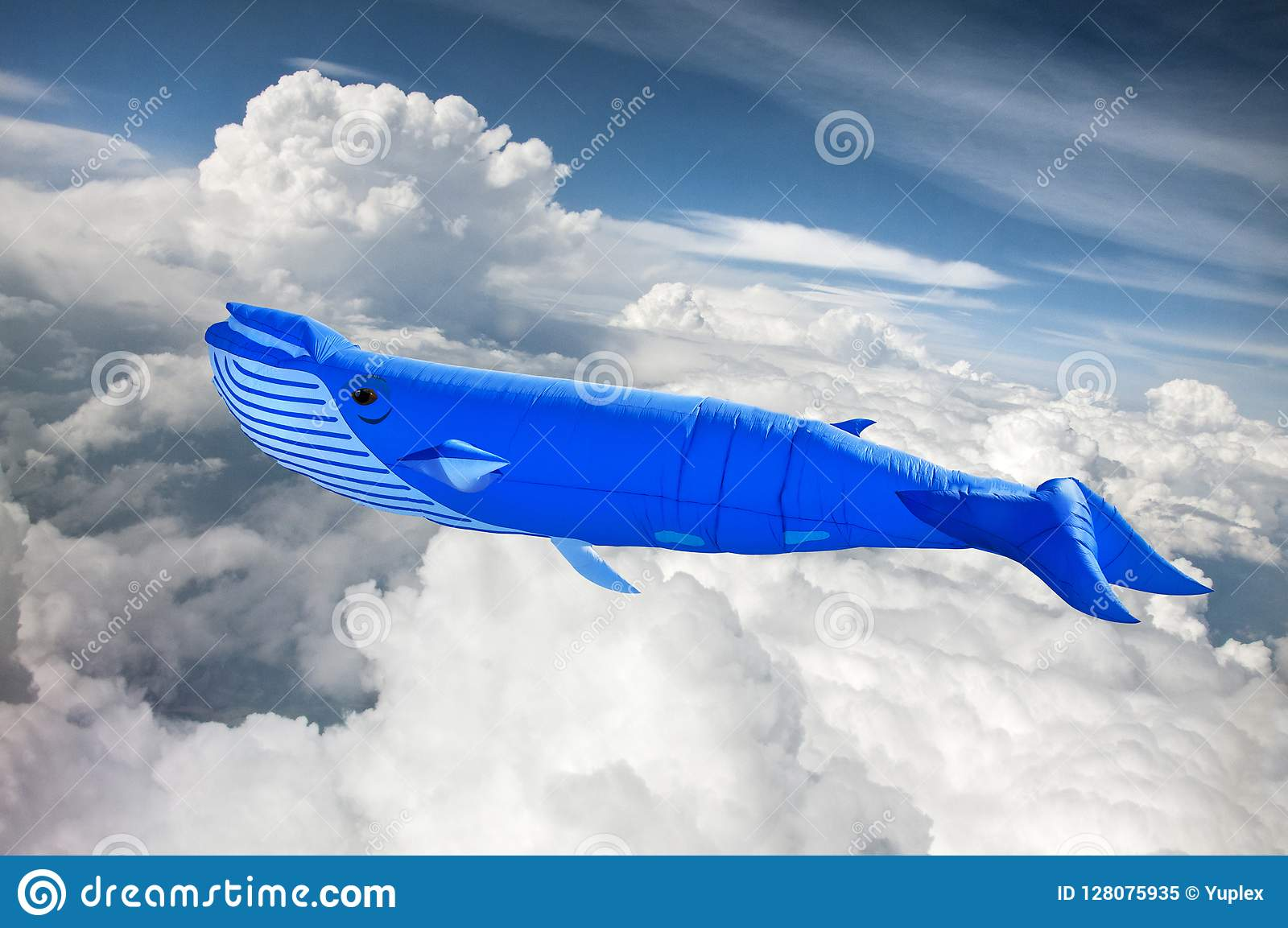 The blue whale in the sky