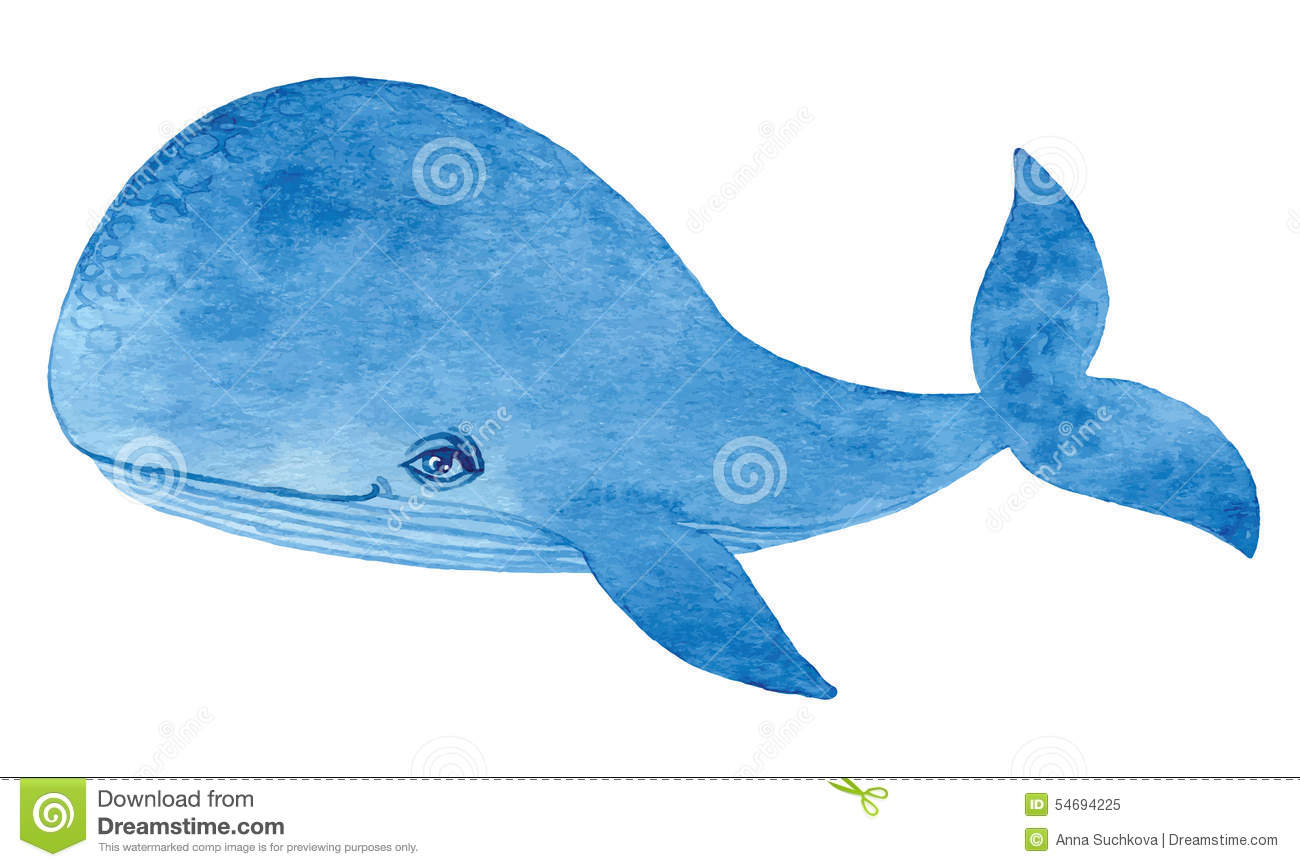 Blue whale - watercolor cartoon hand drawing paint Pacific Ocean Underwater Animals