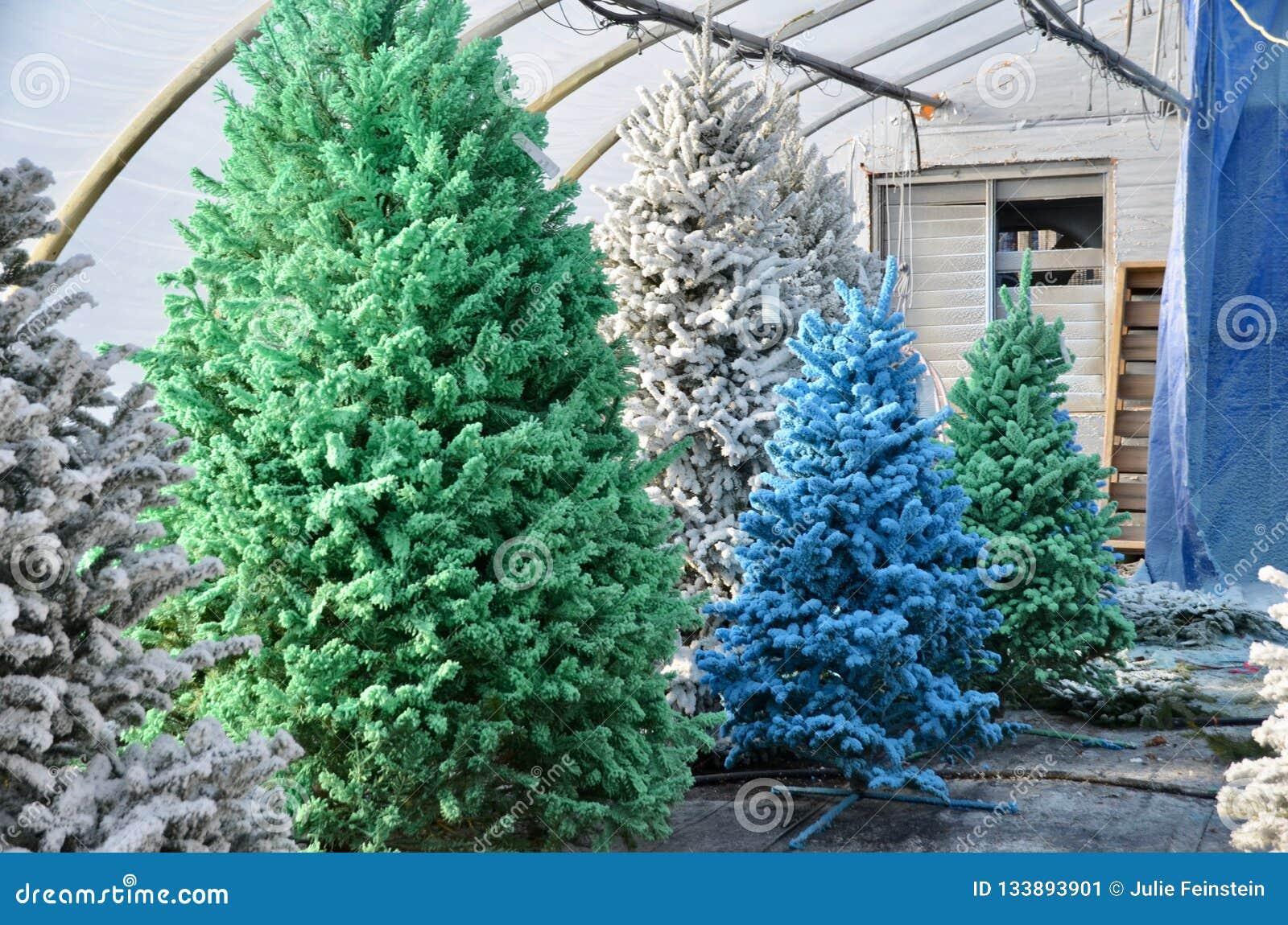 Color Flocked Christmas Trees Stock Image Image Of Flocked Tree 133893901