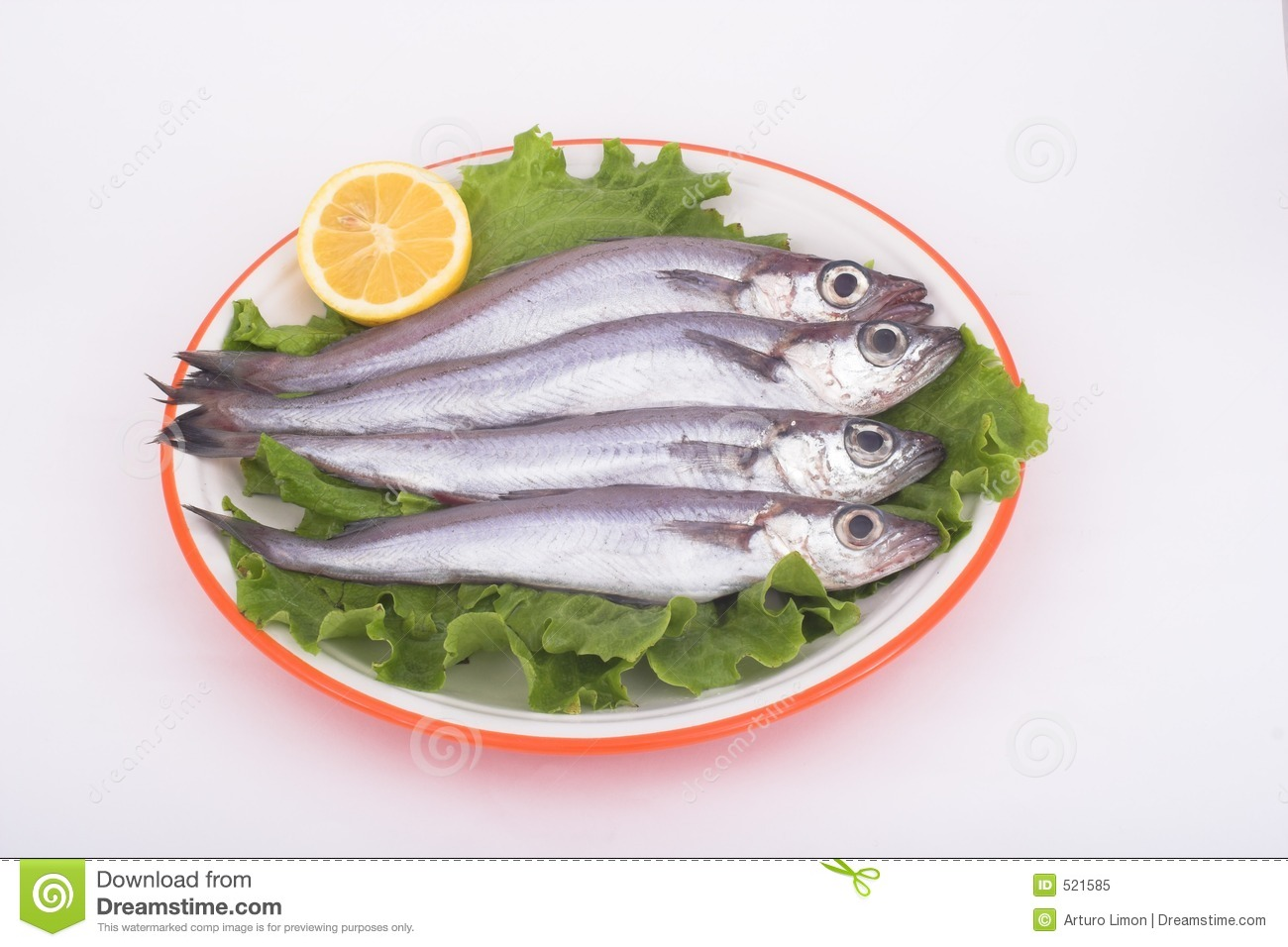 Blue whiting fish royalty free stock photo image 521585 for Whiting fish picture