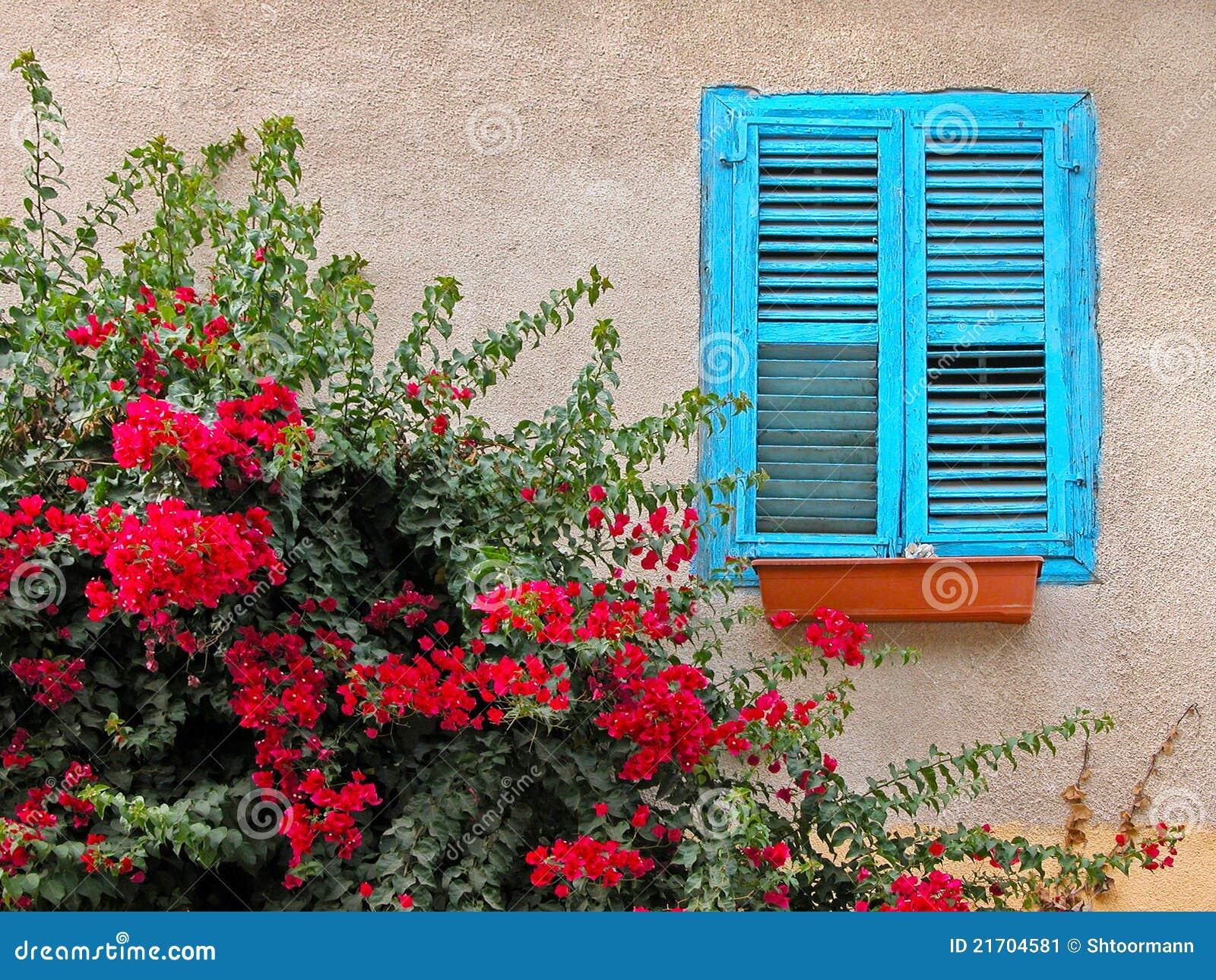 Blue Window Wood Blinds Stock Image Image Of Exterior 21704581